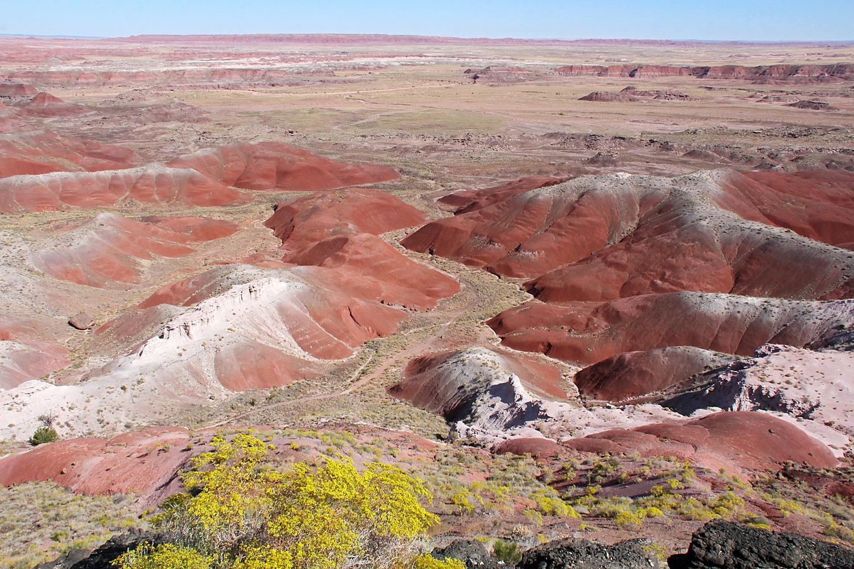 Painted Desert - Kachina Point by Carl Main