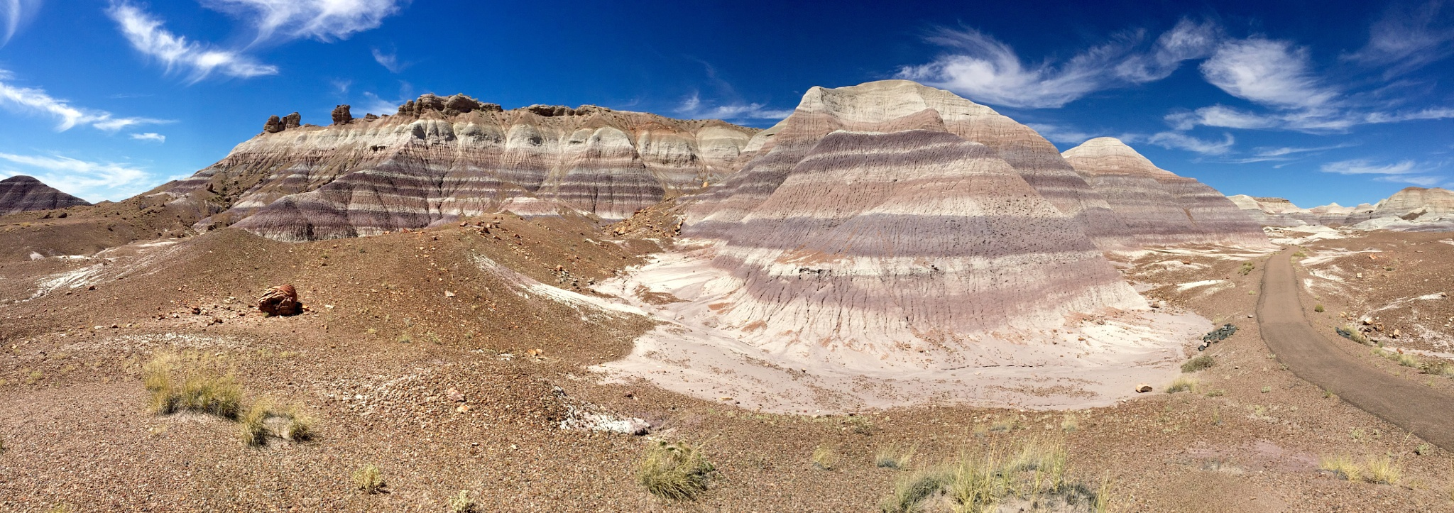 Petrified Forest - Blue Mesa Panorama by Carl Main