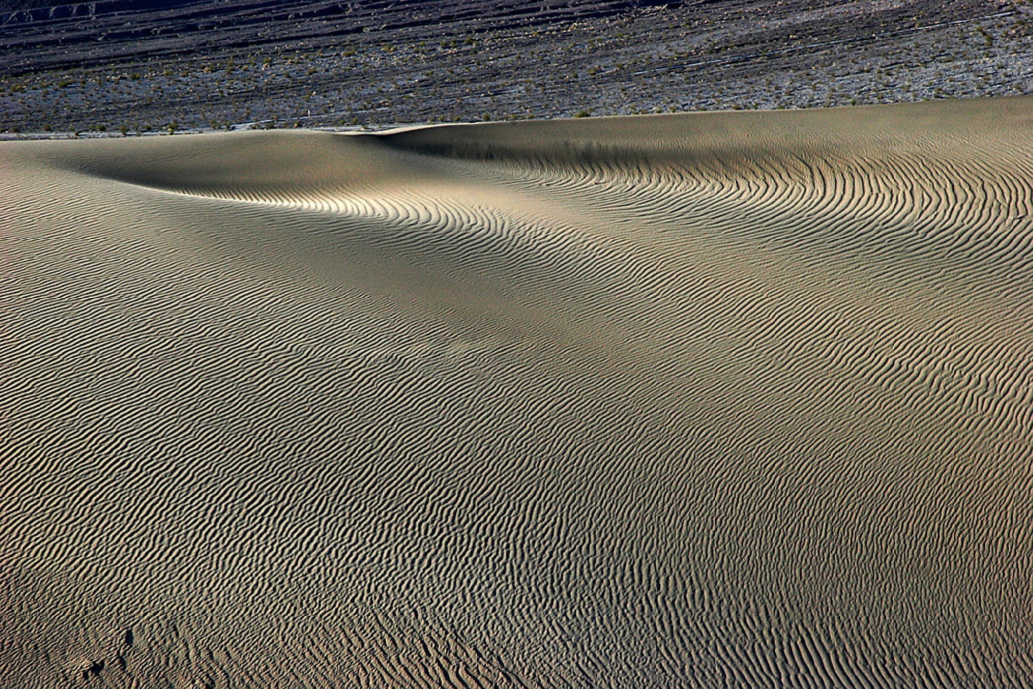 Death Valley Dunes by Carl Main