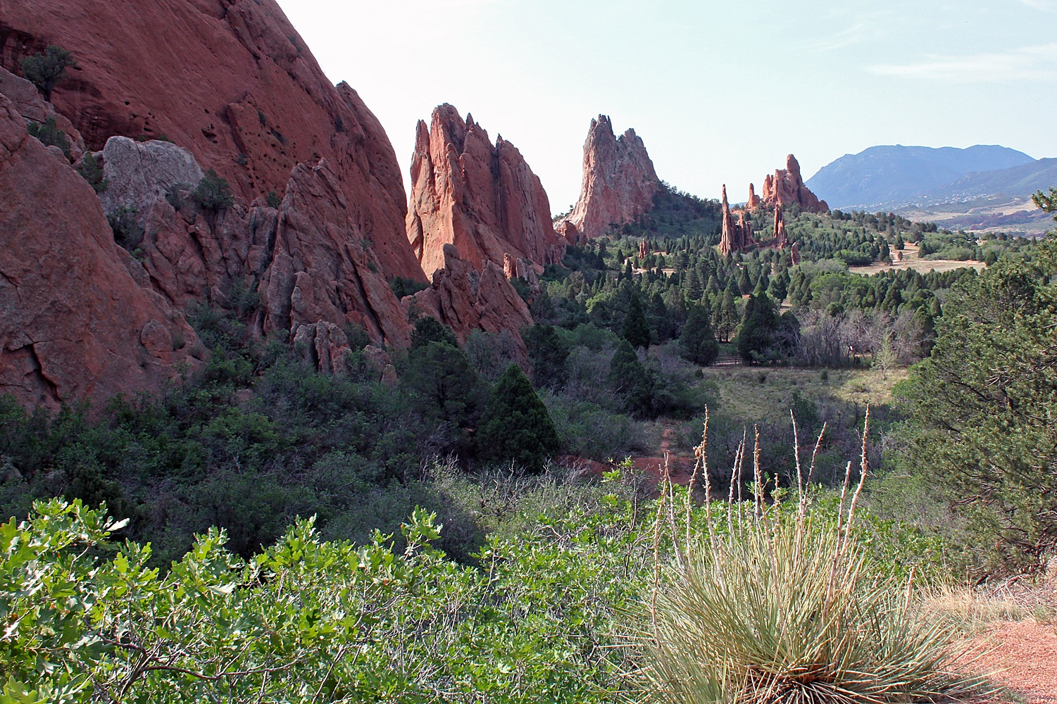 Garden of the Gods by Carl Main