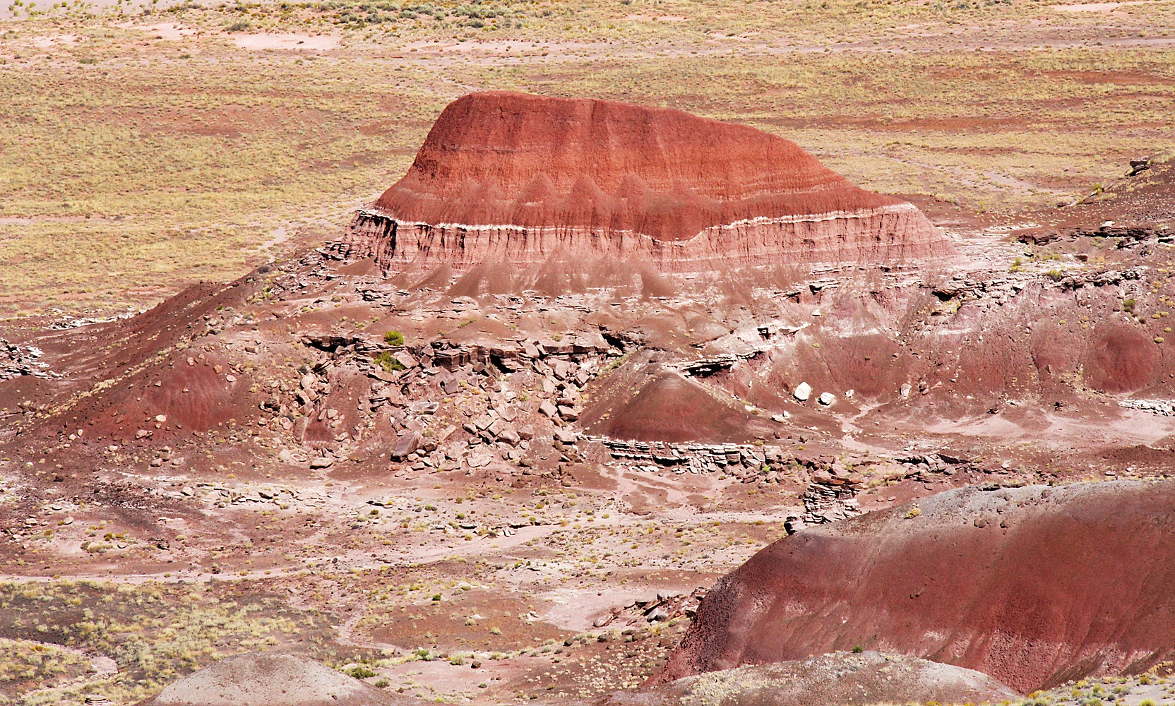 Painted Desert - Chinde Point by Carl Main