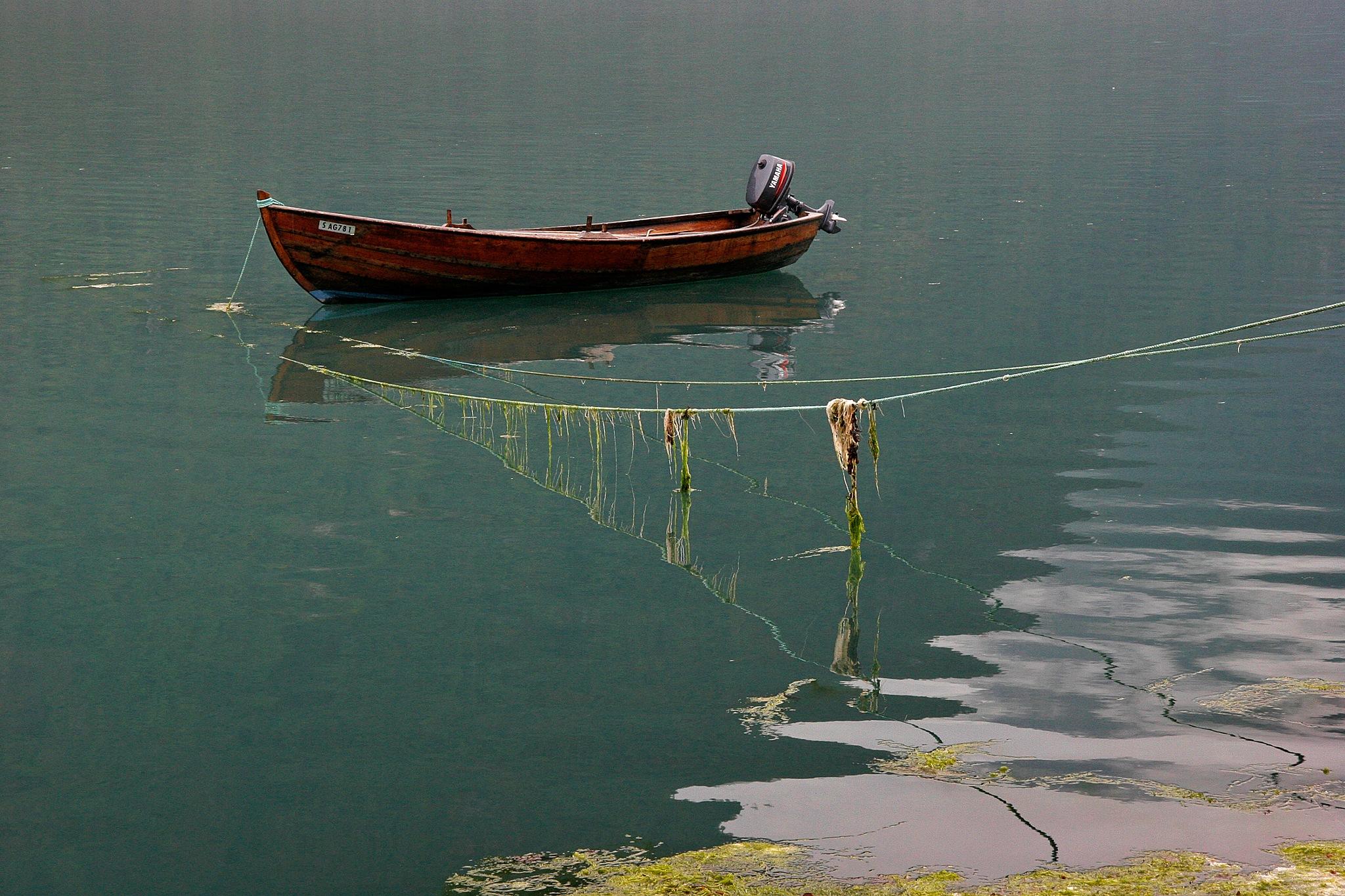 Fjærland Fjord 2 by Carl Main
