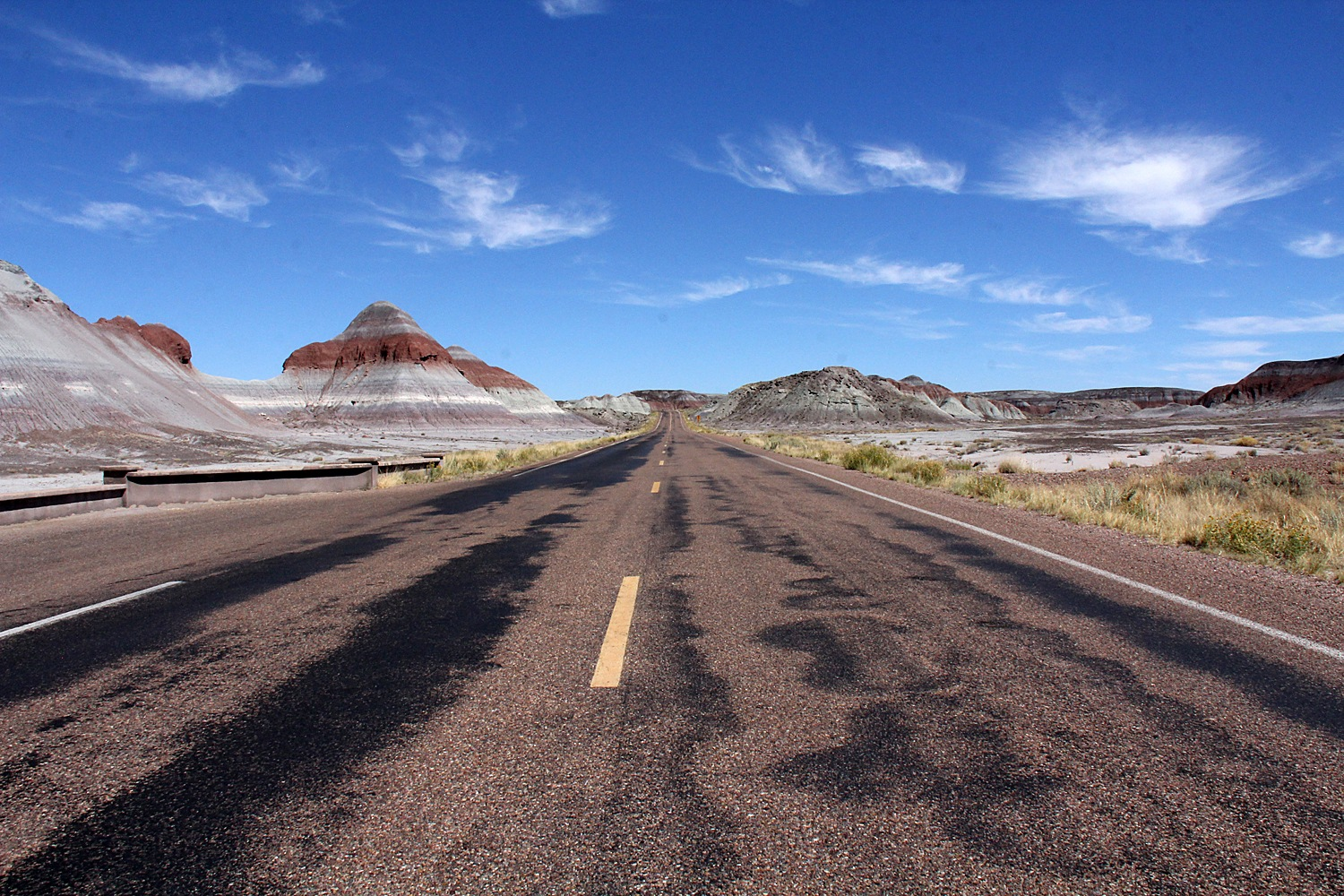 Petrified Forest National Park by Carl Main