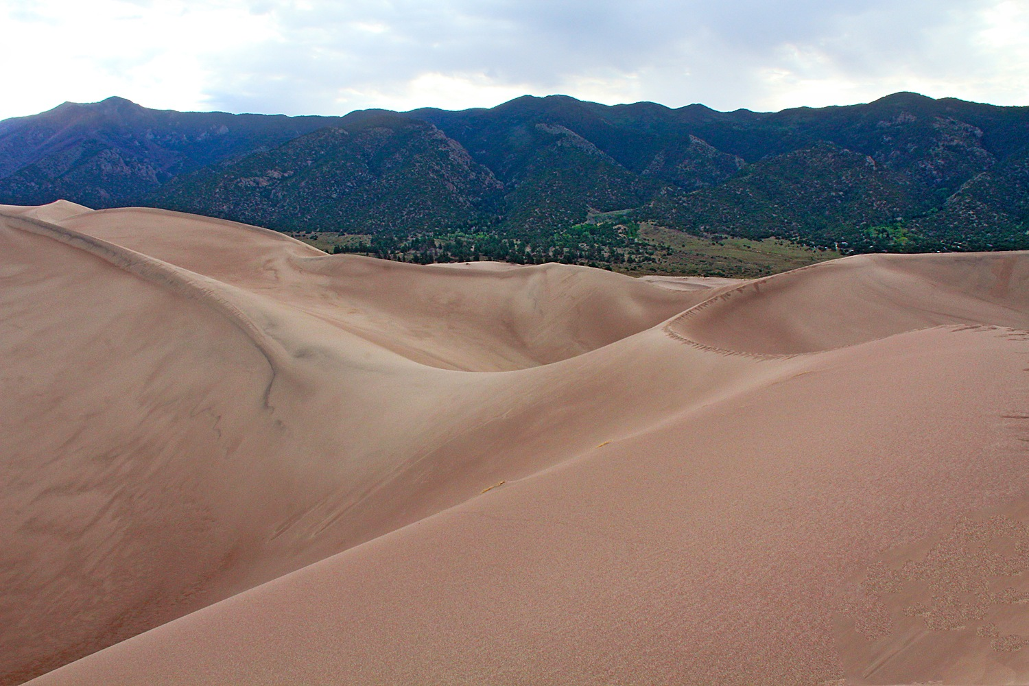 Great Sand Dunes National Park by Carl Main