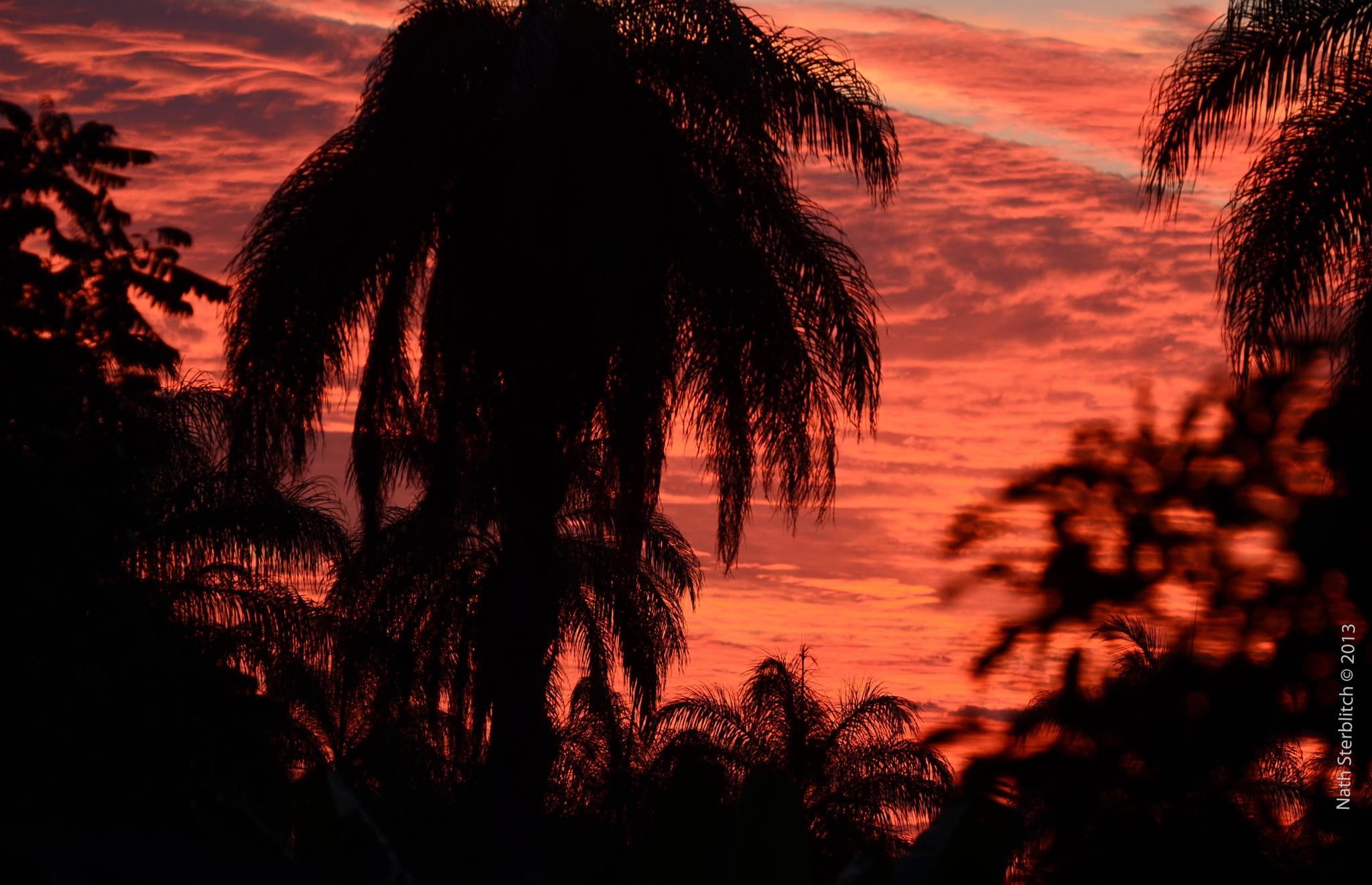 Pink sunset   Por-do-sol rosa !  by nathsterblitch