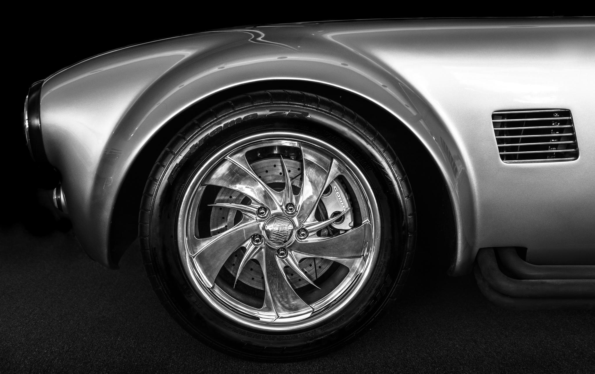 Vintage Shelby Cobra by Chandler L. Walker