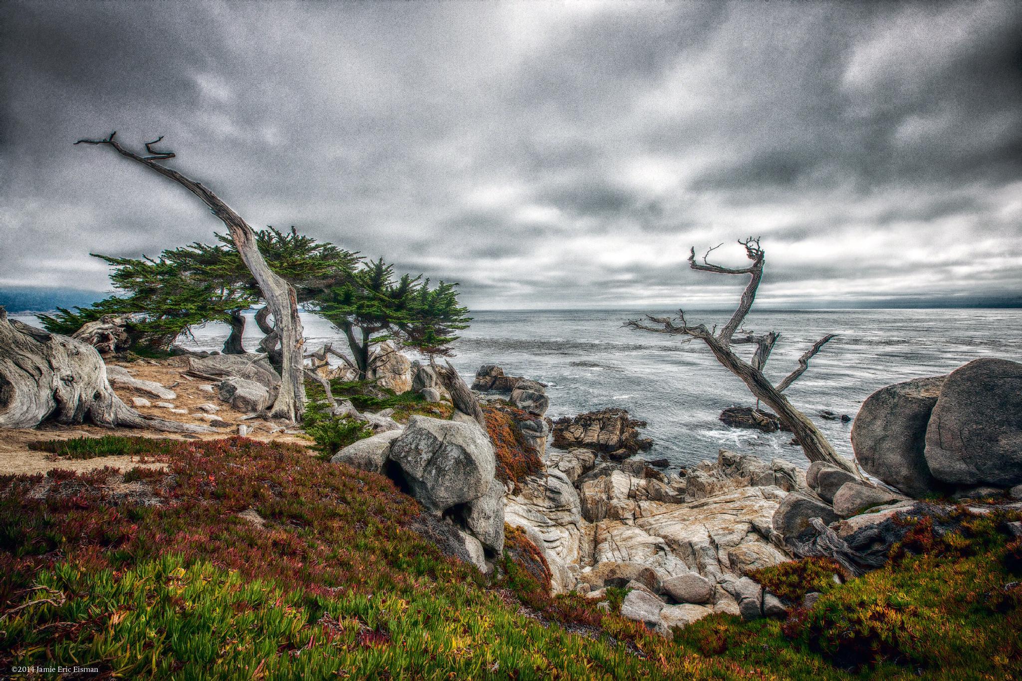 Carmel  by Jamie Eric Eisman