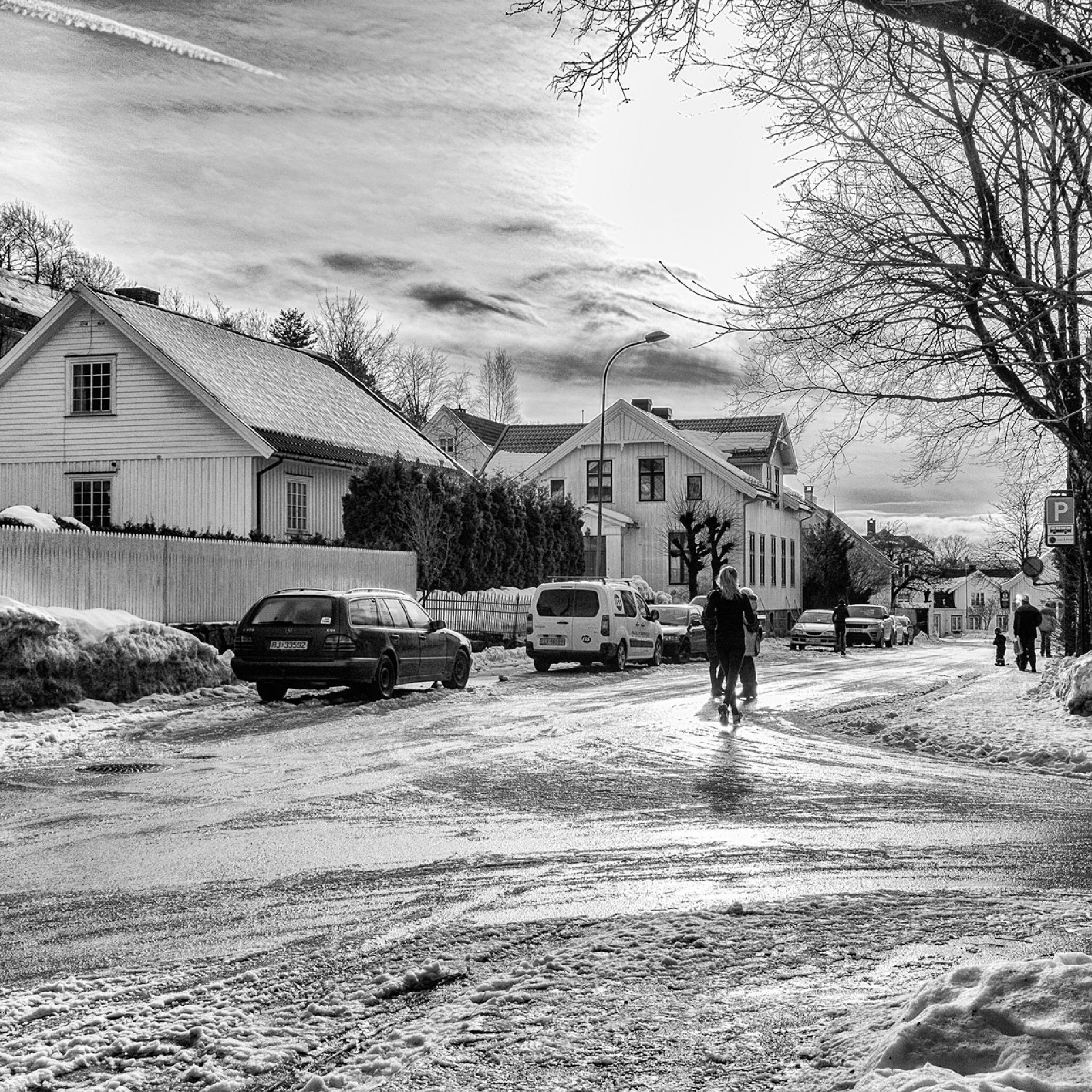 Winter by Frank Emil Østborg