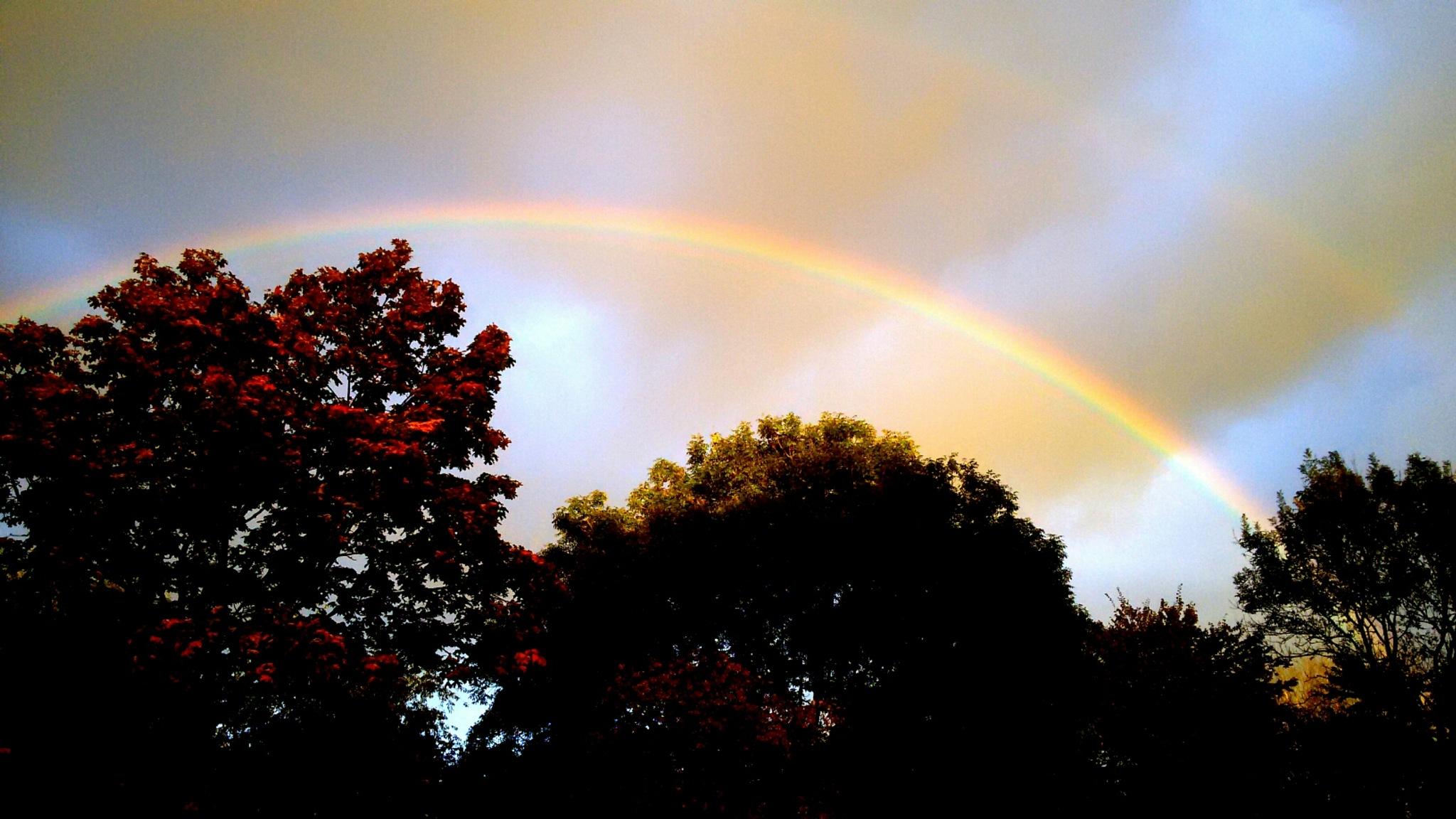 Regenboog  by RegienQD