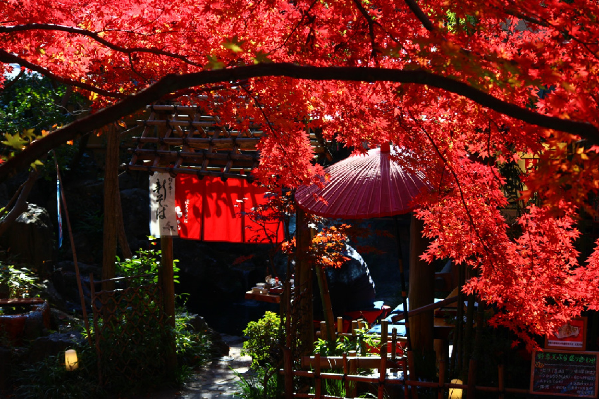 japanese buckwheat teahouse in autumn by K-Style Photo