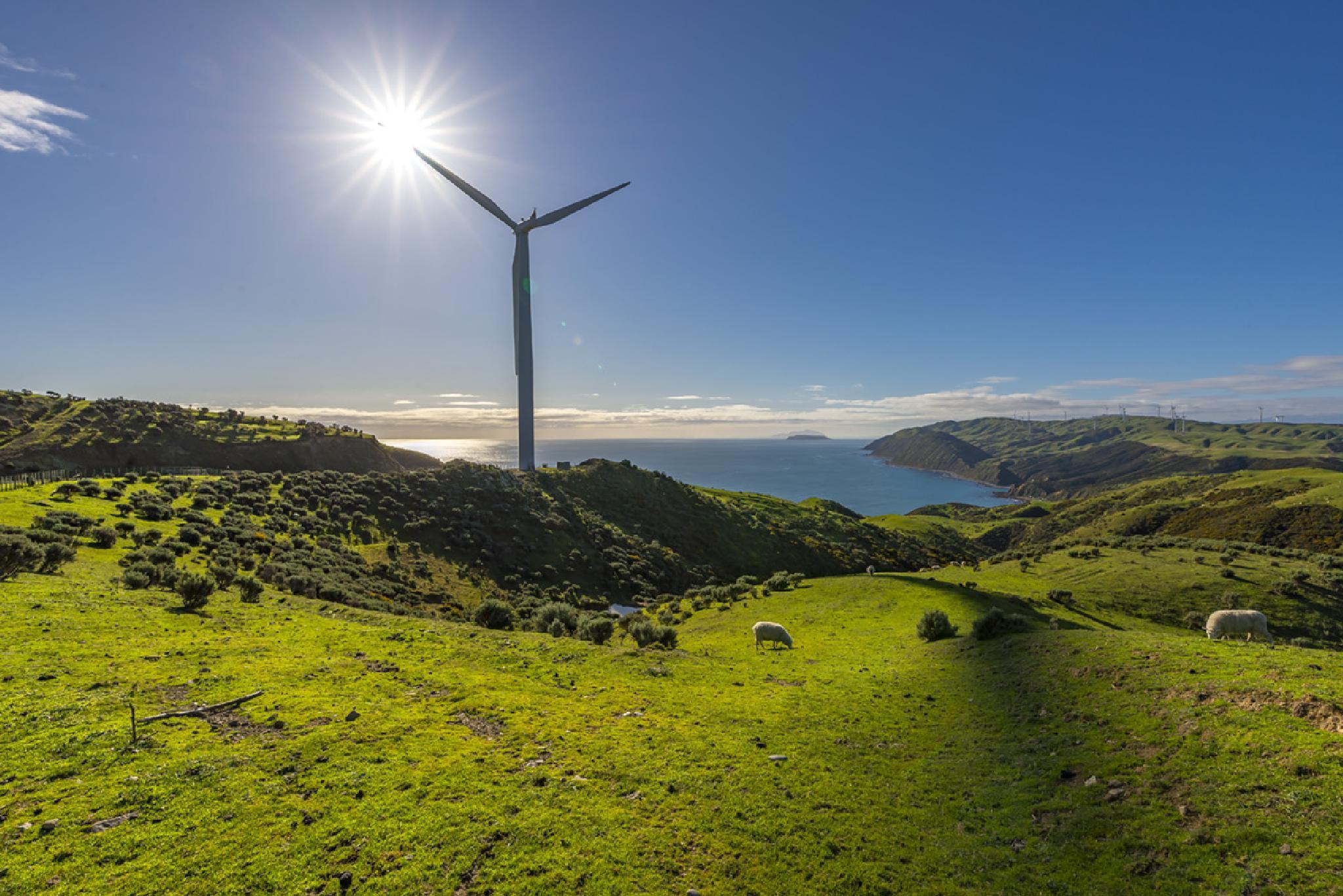 Windfarm at Makara by philinnz