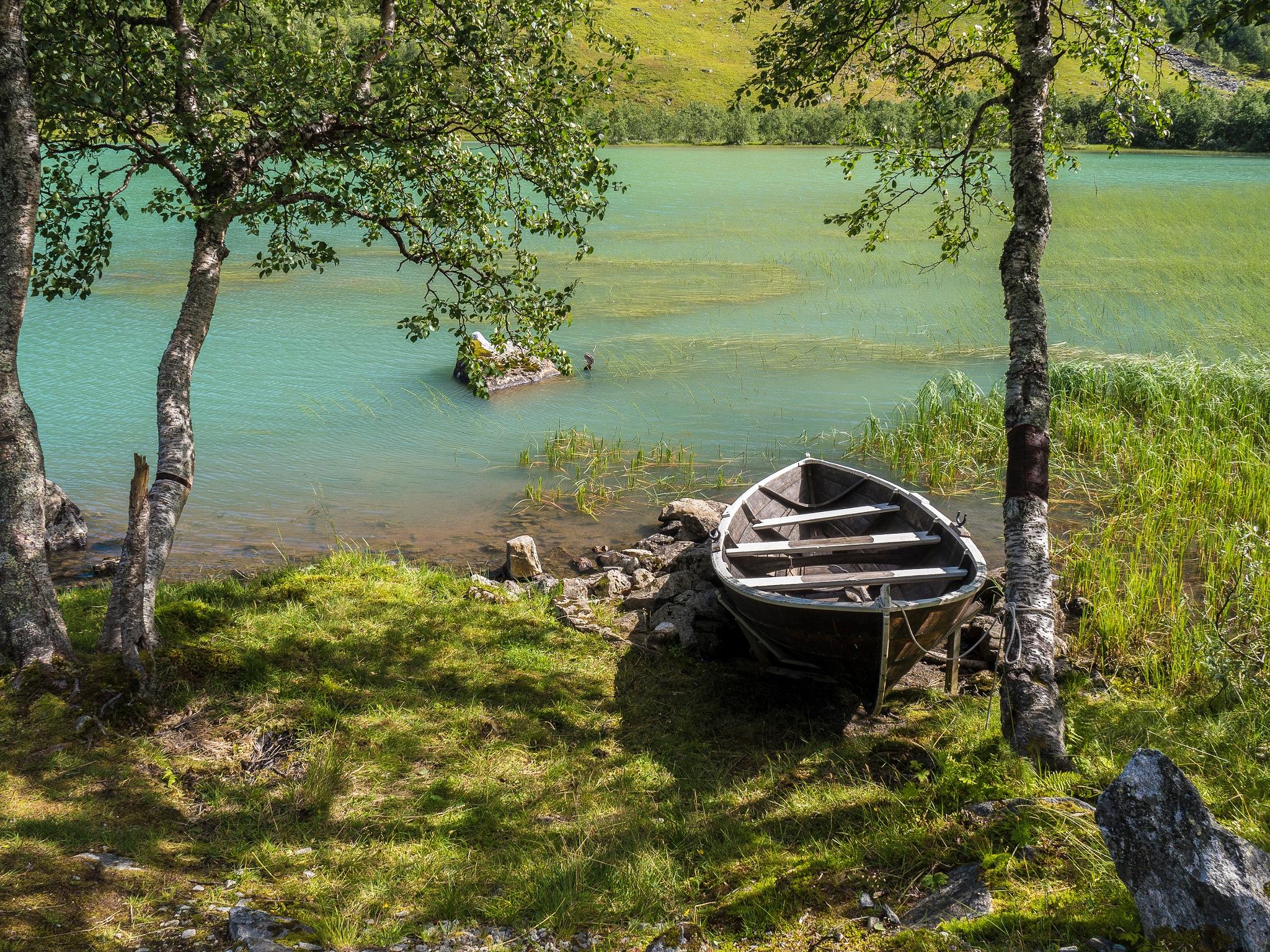 By a mountain lake by Helge Arne Hanken