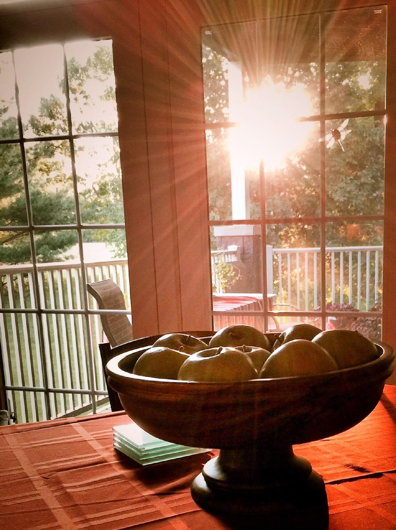 Good Morning, Sunshine! by Susan Wood