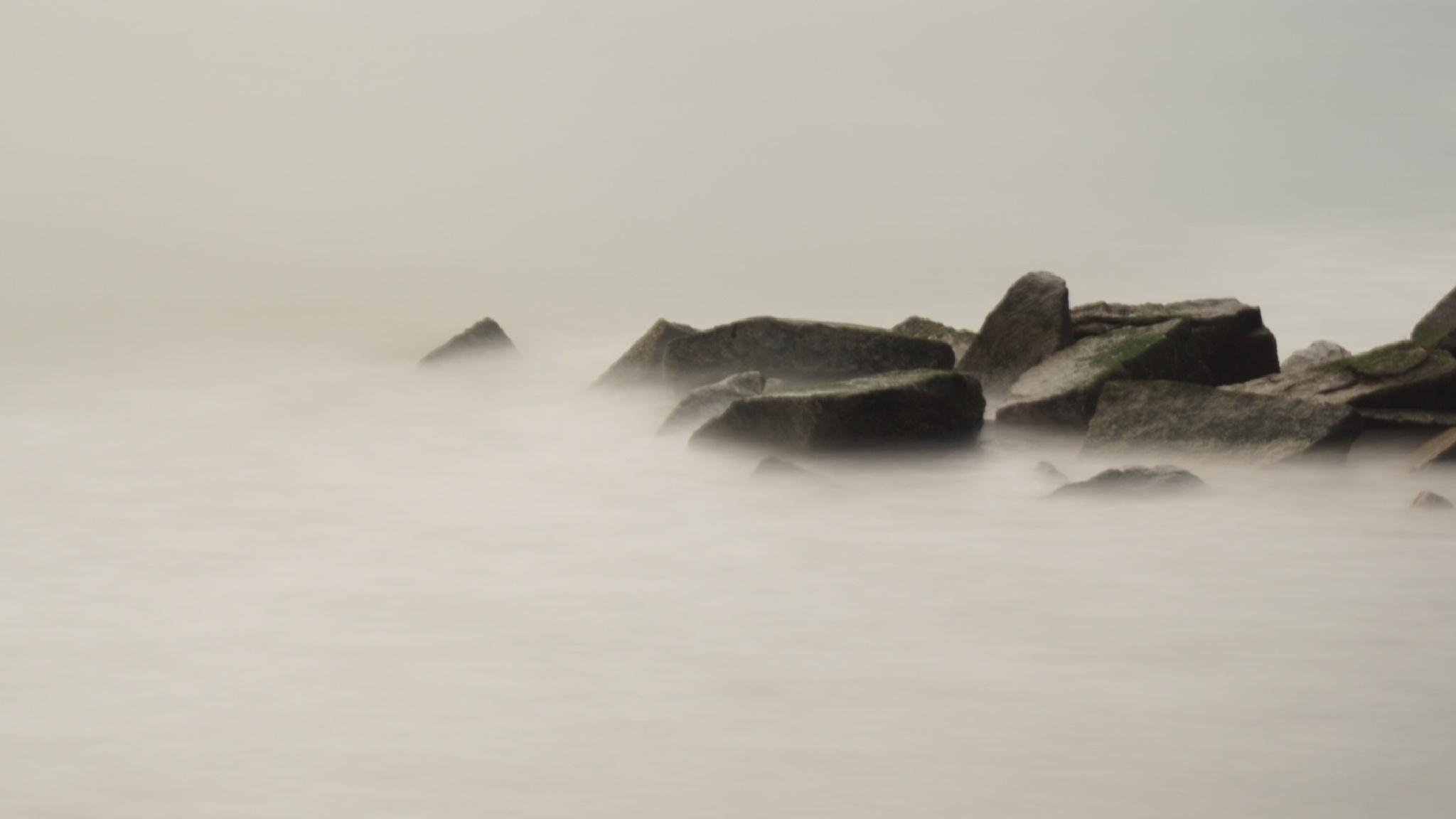 Rocks at Coney Island  Beach by Msladyborsa