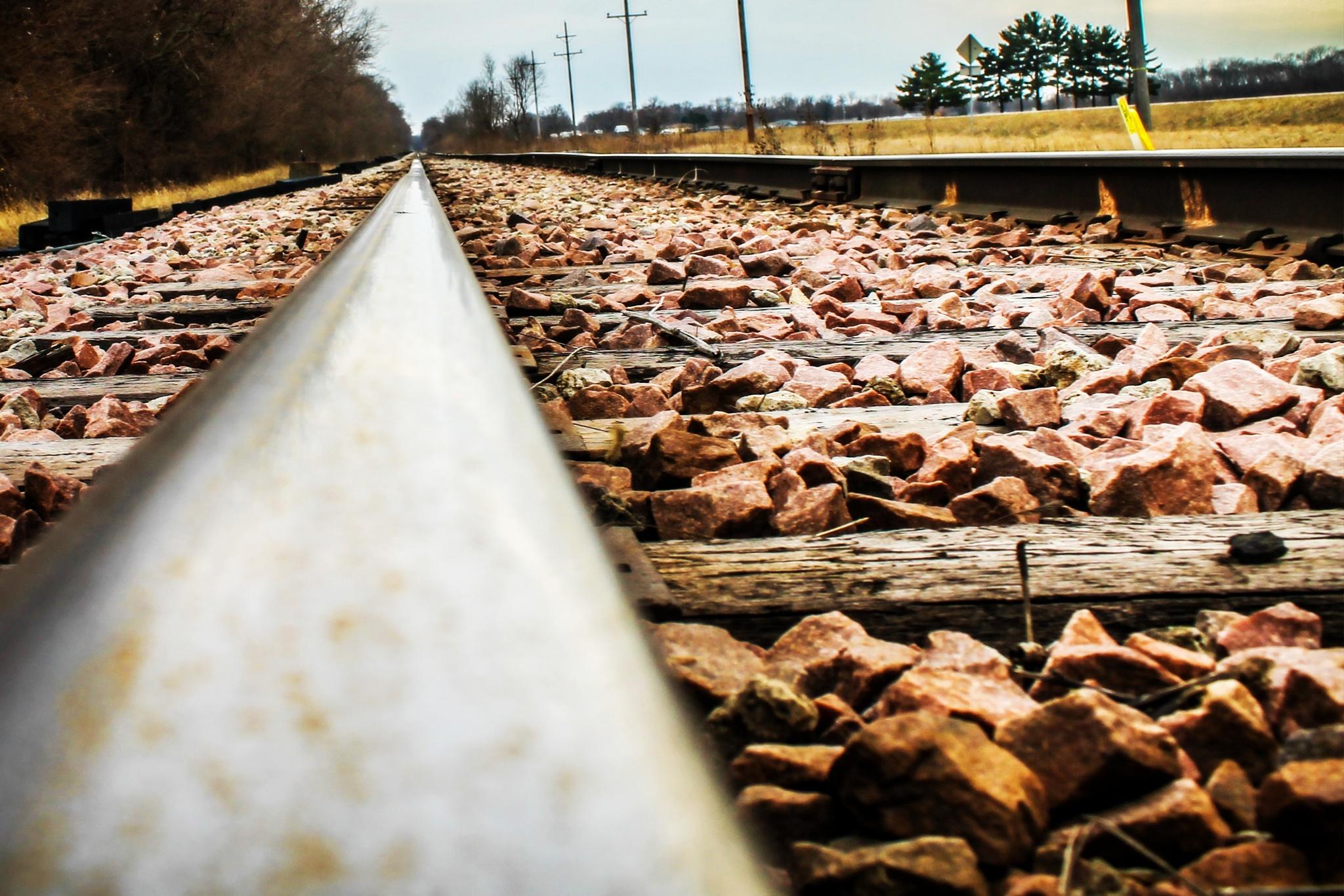 Ridin' the Rail by Mark Hootman
