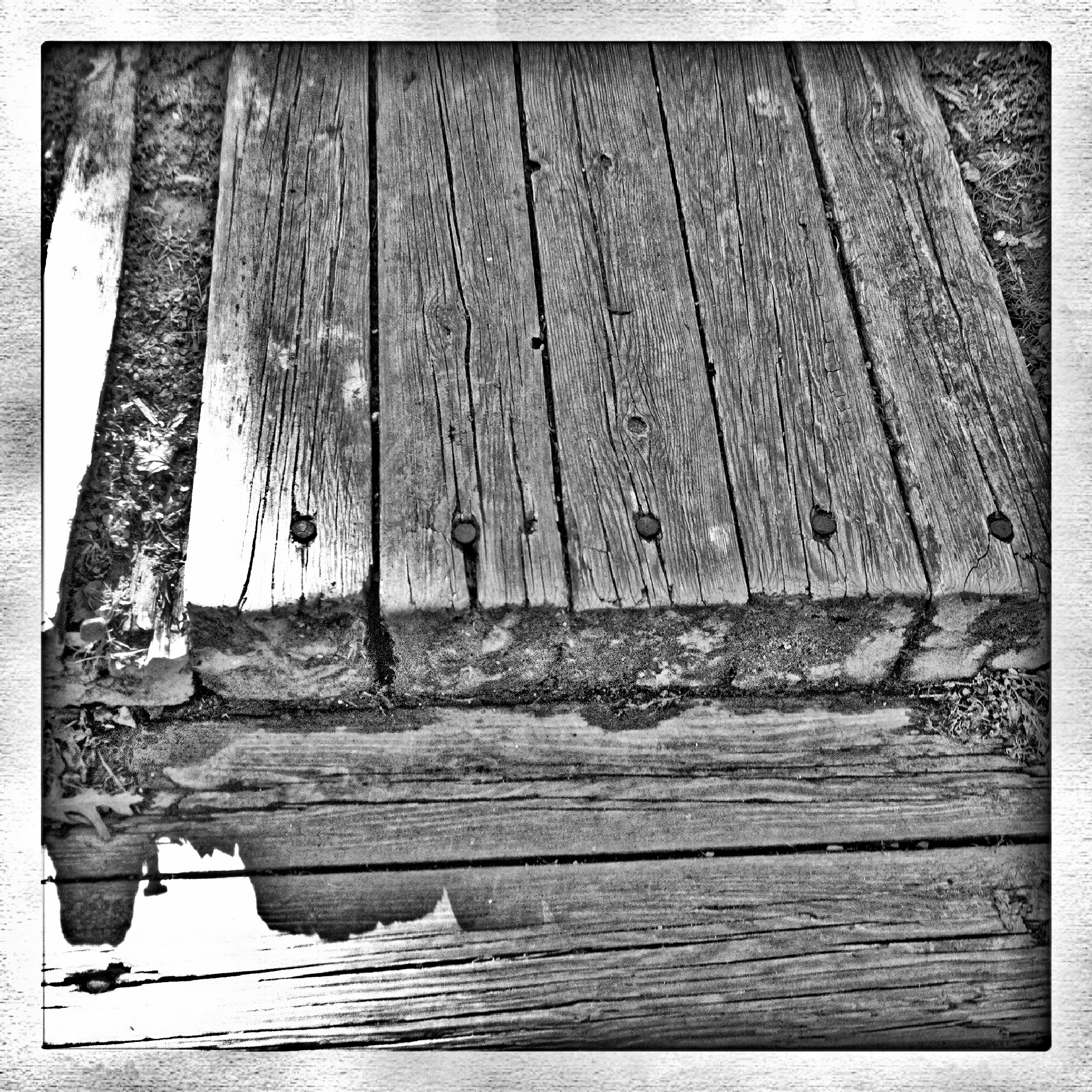 old wood steps by Mark Hootman