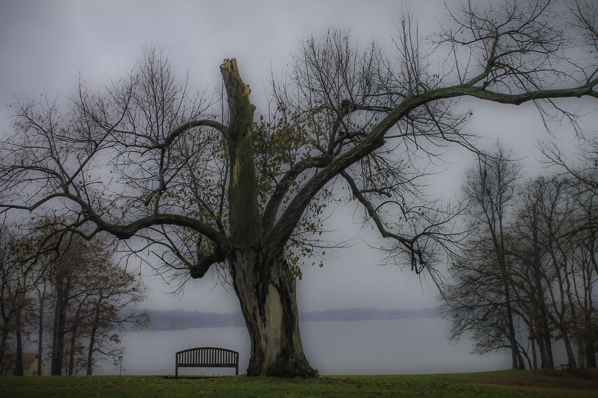 A Place to rest by Mark Hootman
