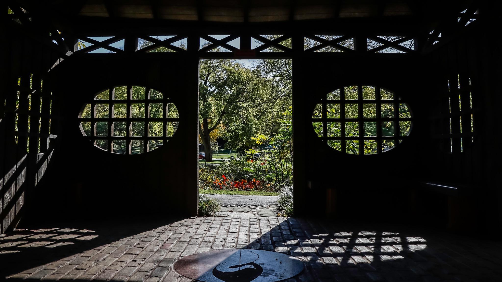 Pagoda Shadows 2 by Mark Hootman