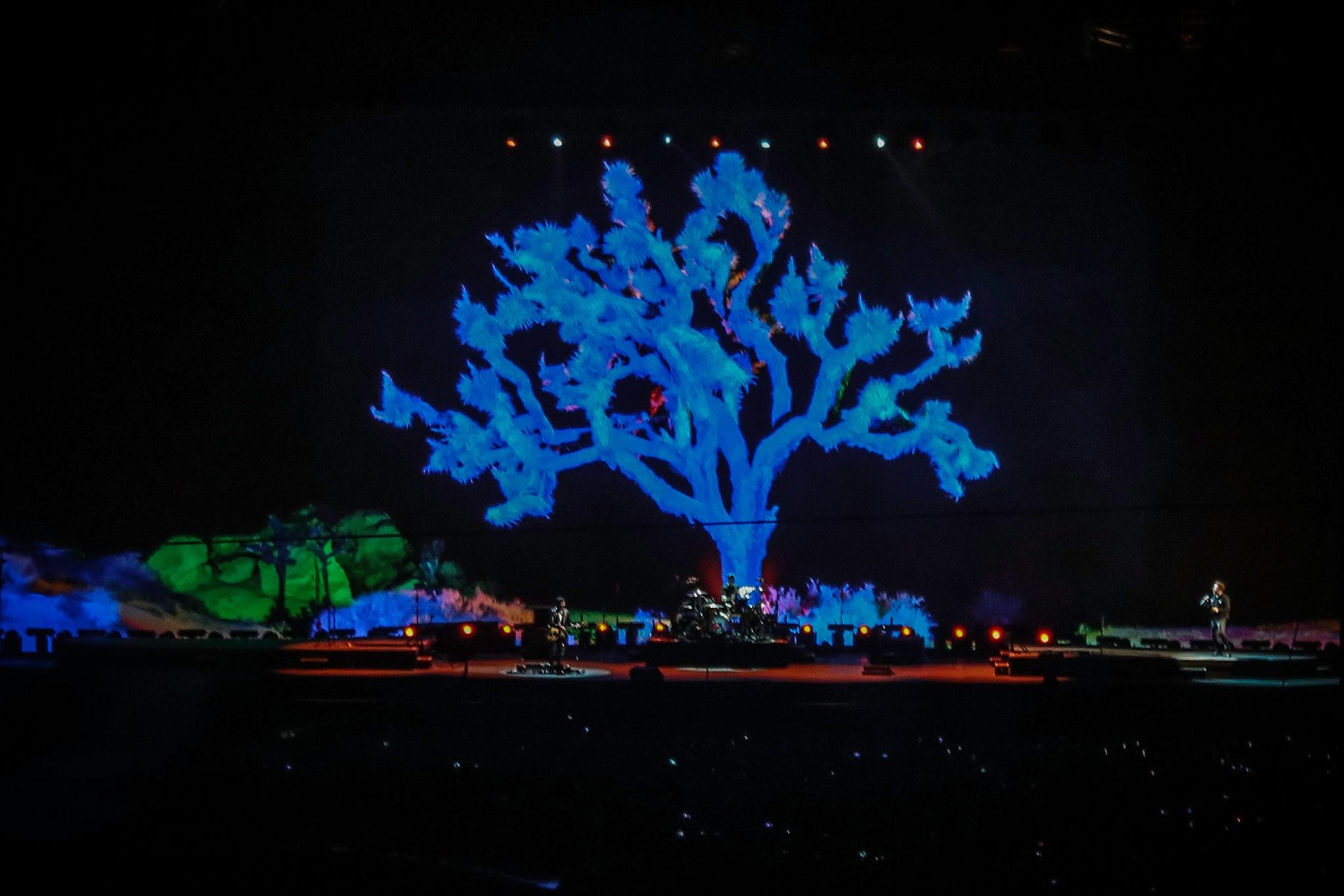 U2 (Joshua Tree Tour) by Mark Hootman