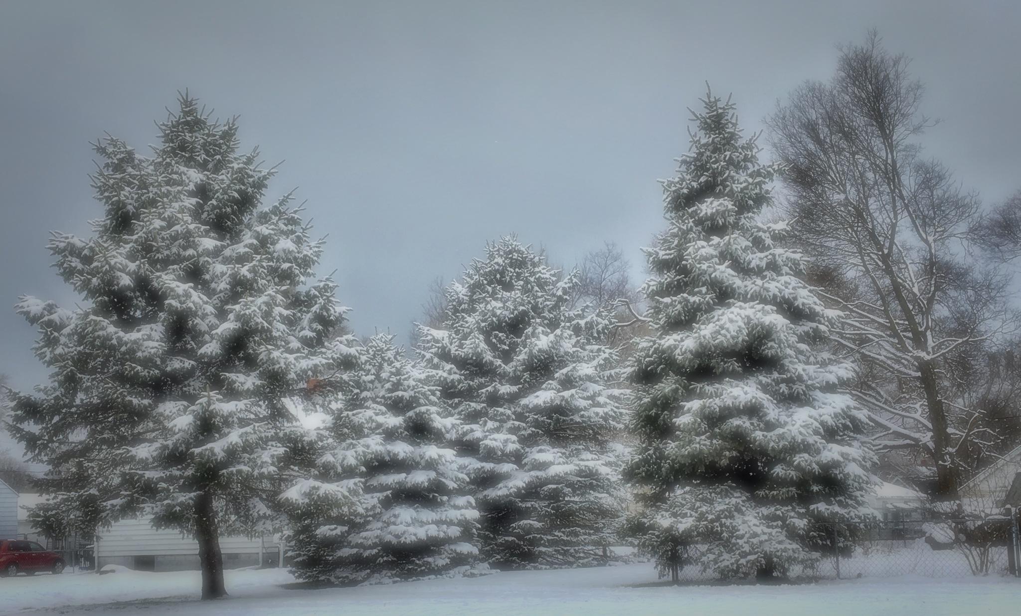 Last Blast of Winter by Mark Hootman