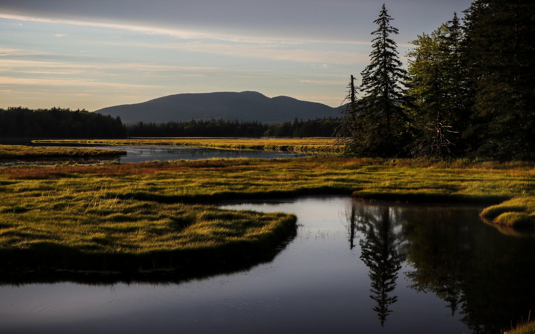 Peaceful reflection by Mark Hootman