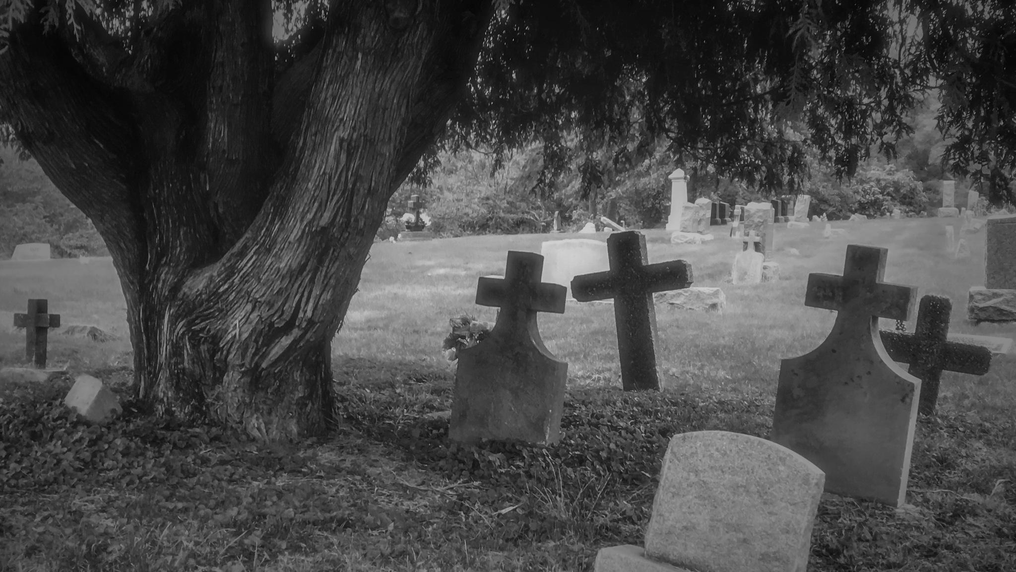 Fall / Halloween Scene by Mark Hootman