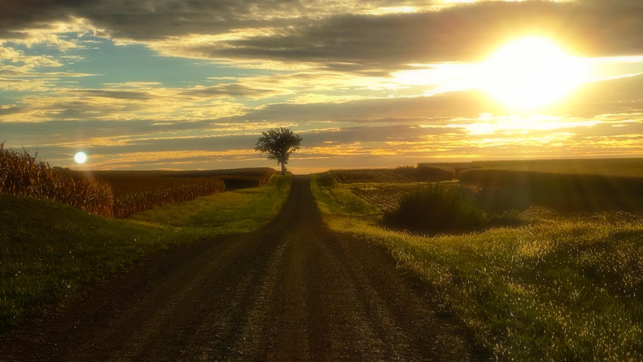 Fall Sunrise 2 by Mark Hootman