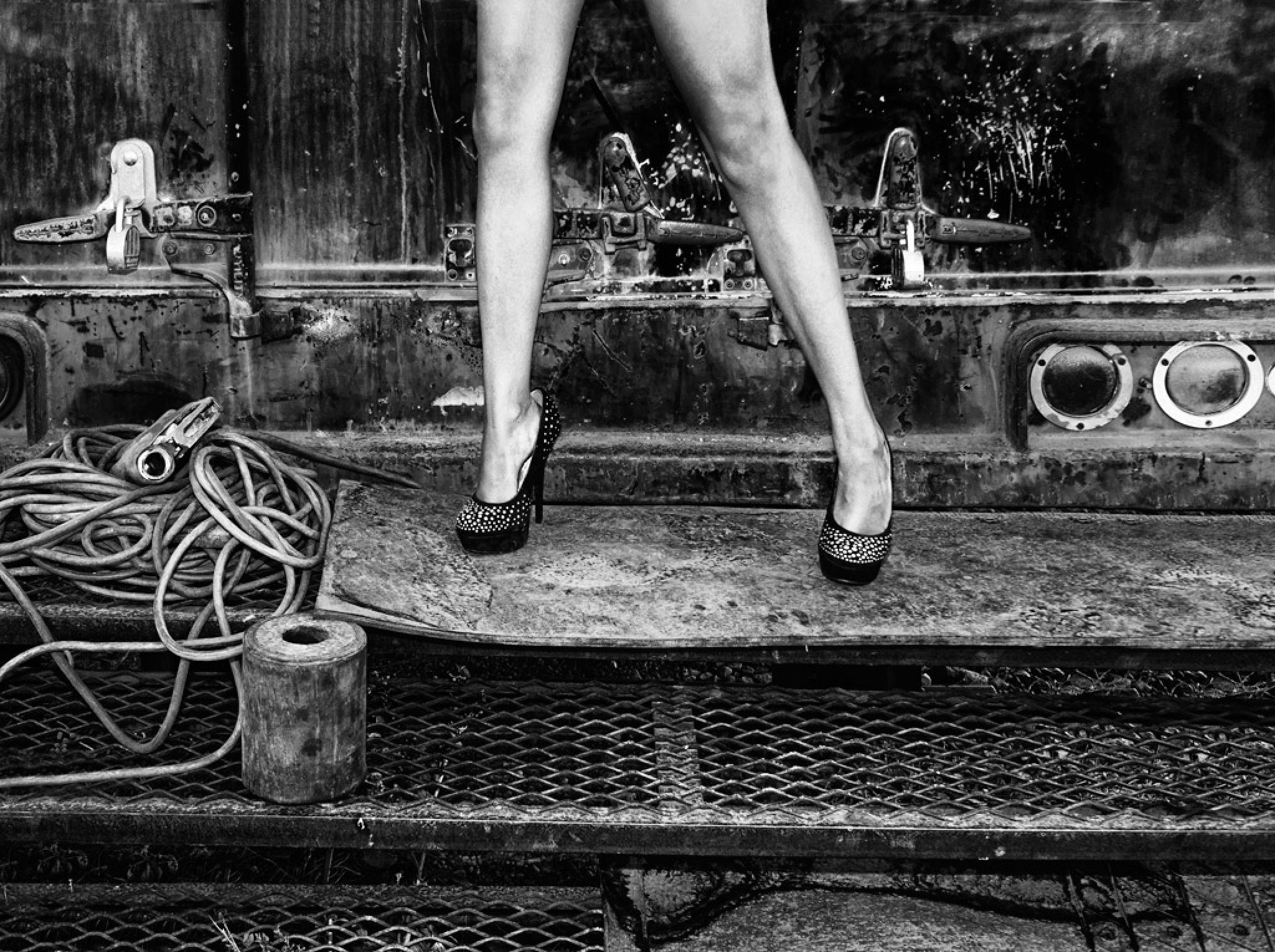 Legs by whitetigertom