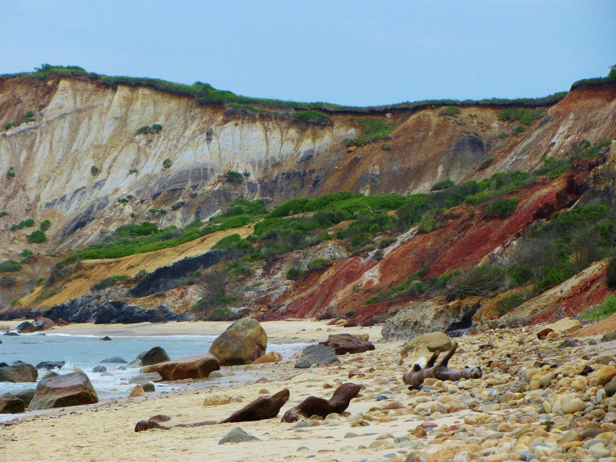 Colorful clay cliffs of Aquinnah by Cindy Romero