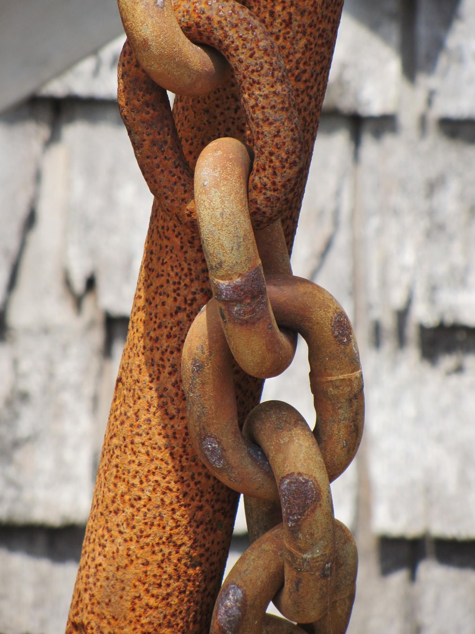 Photo in Random #chain #anchor #rust #menemsha #martha's vineyard