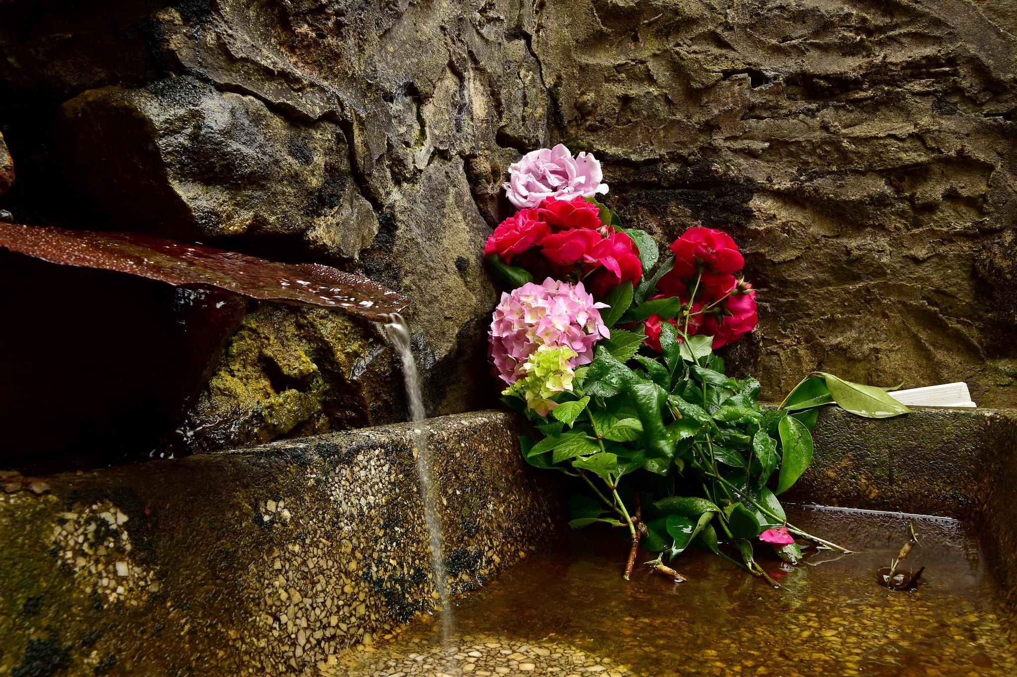 Flowers to the water by Xurde González Uría