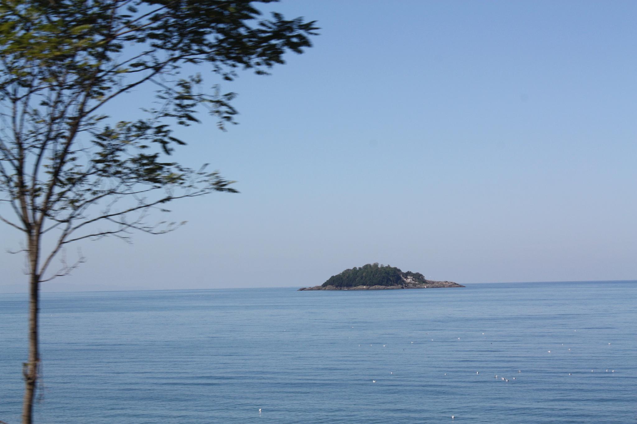 Giresun adasına bakış by mehmetihsancakmak