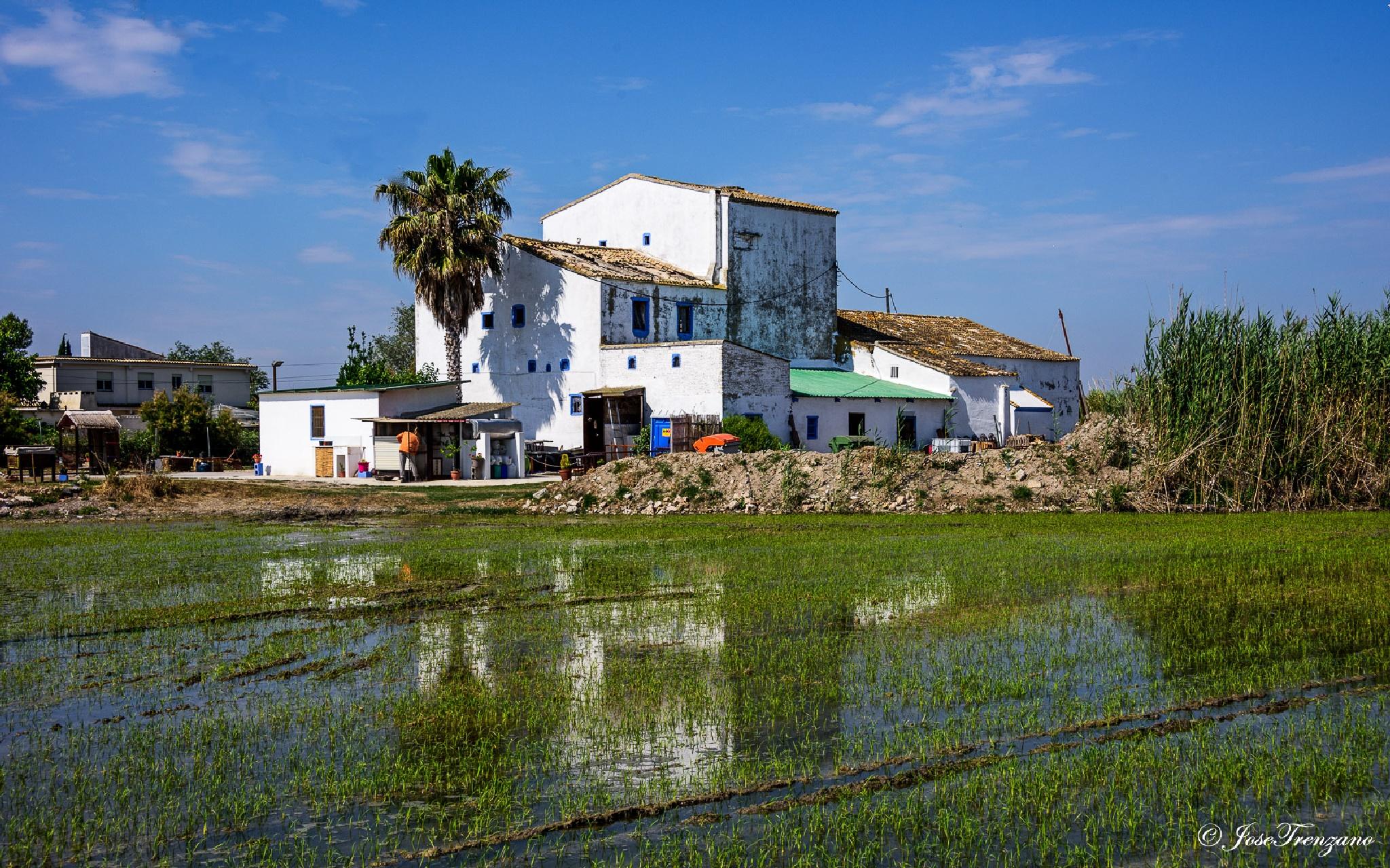 Casa en la Albufera by Jose Trenzano Martinez