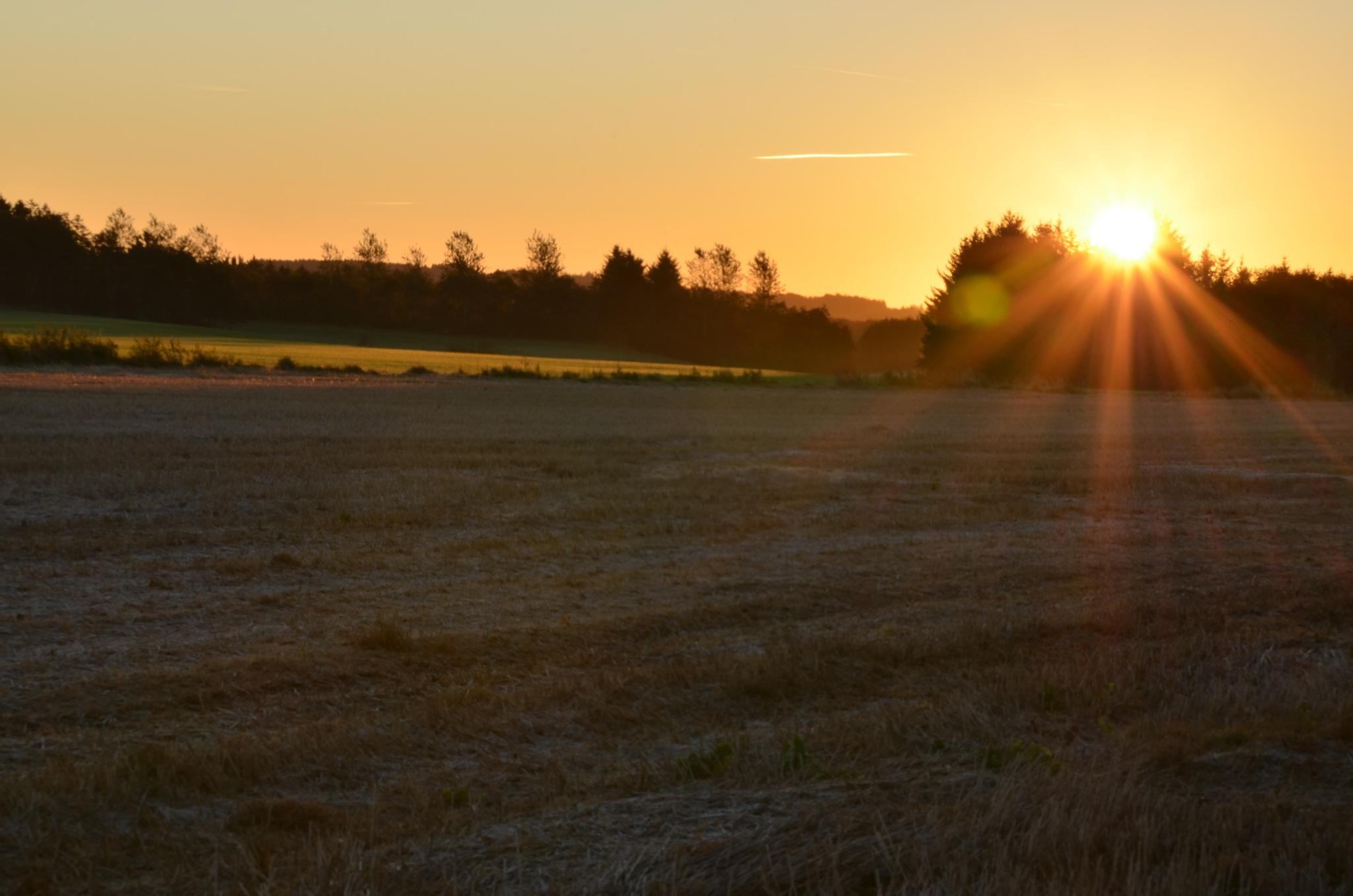 dawn  by EsbenDK