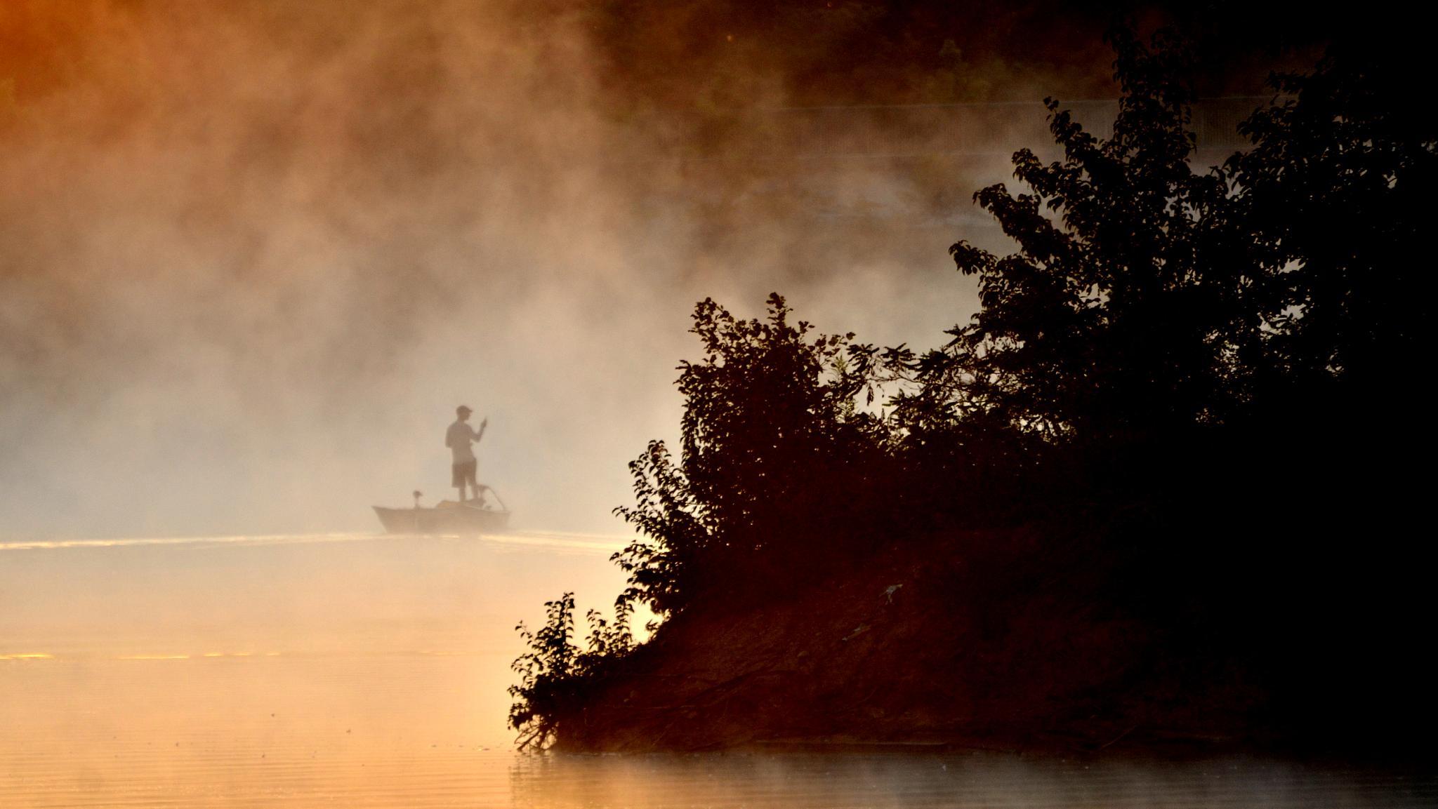 IN A Fog by papaga