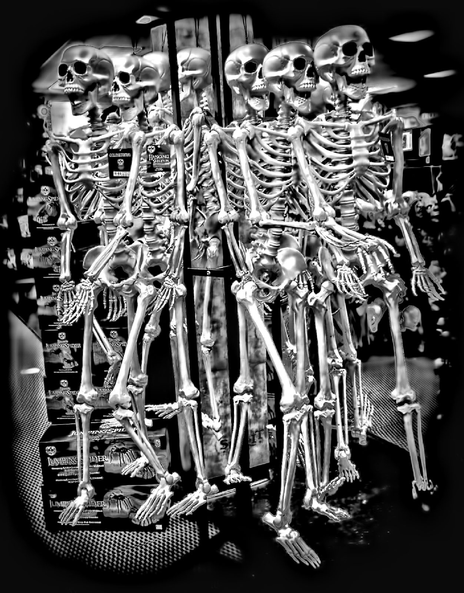 Bones by papaga