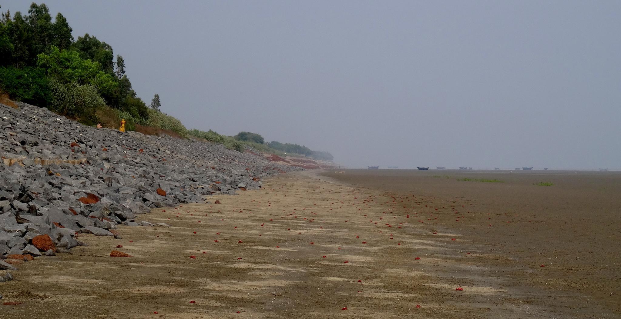 Bankiput Sea Beach by saharajib
