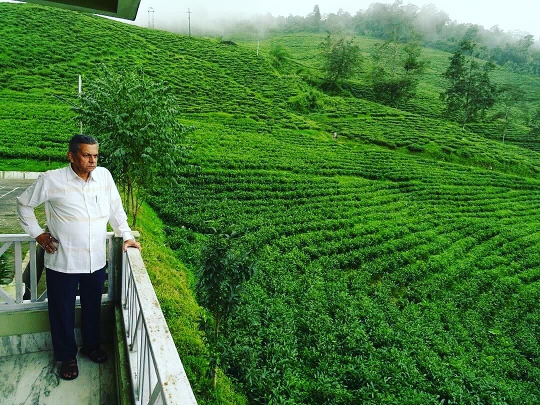 Temi tea garden by saharajib