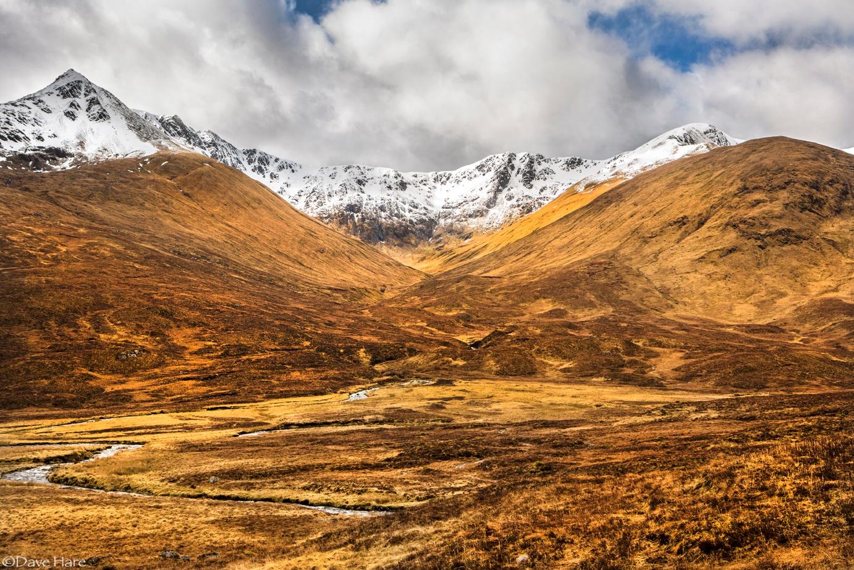 Golden Valley by davehare