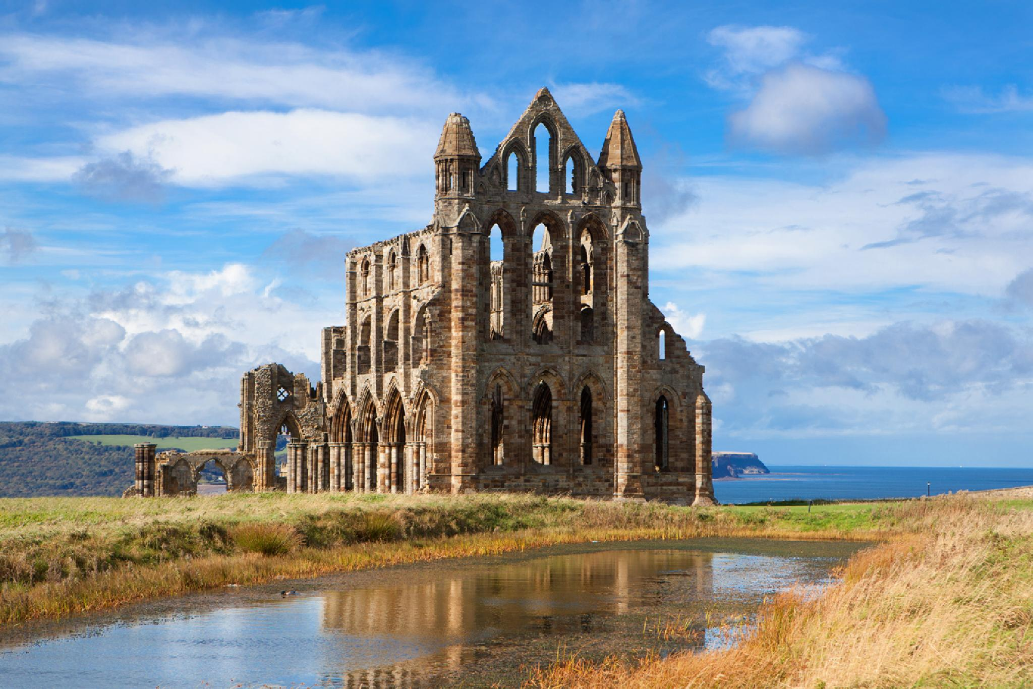 Whitby Abbey by davehare