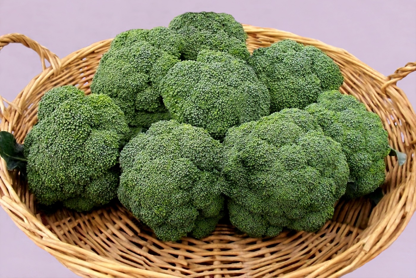 Broccoli 1 by RMCROC