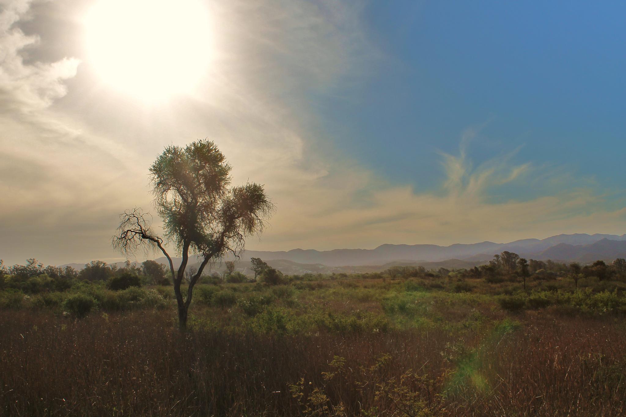 Reserva San Martin by patricia alejandra sanchez