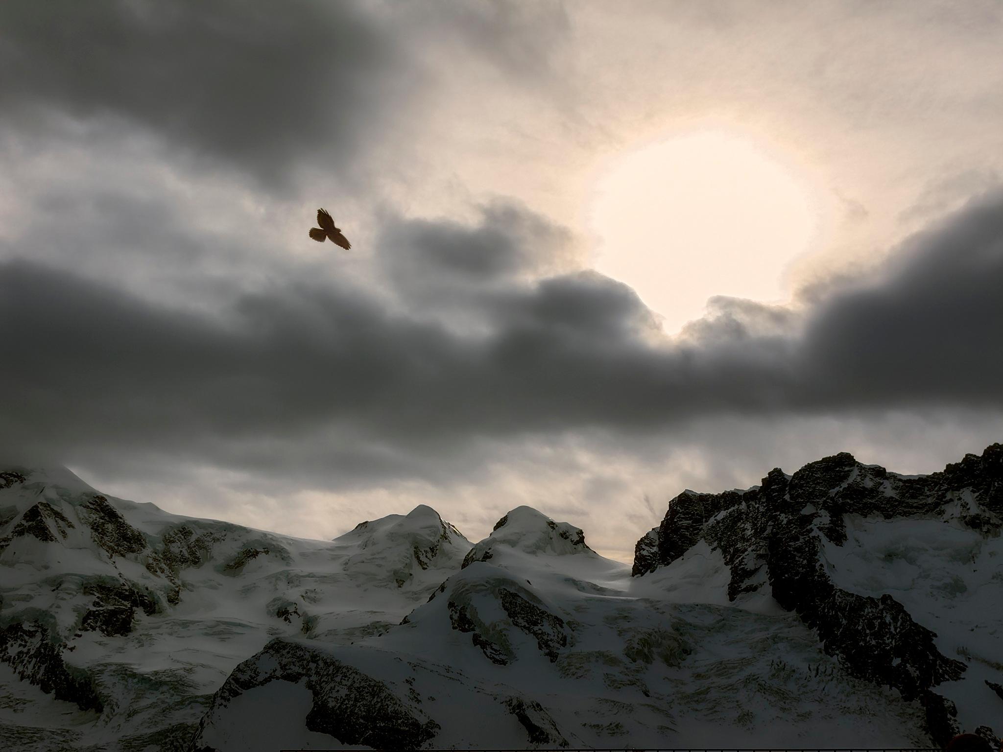 Mountain Light by Herbert Stachelberger