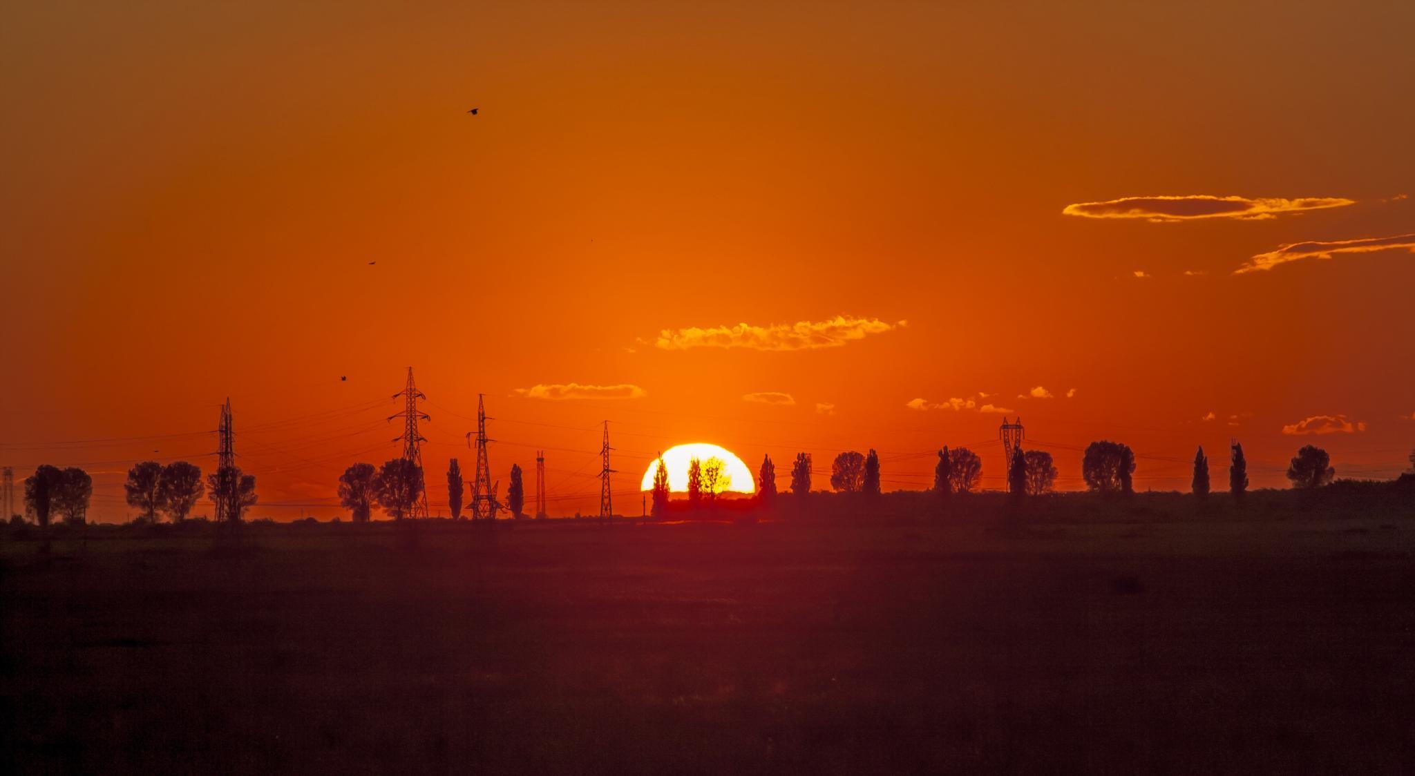 Sun by Barbascu Sorin