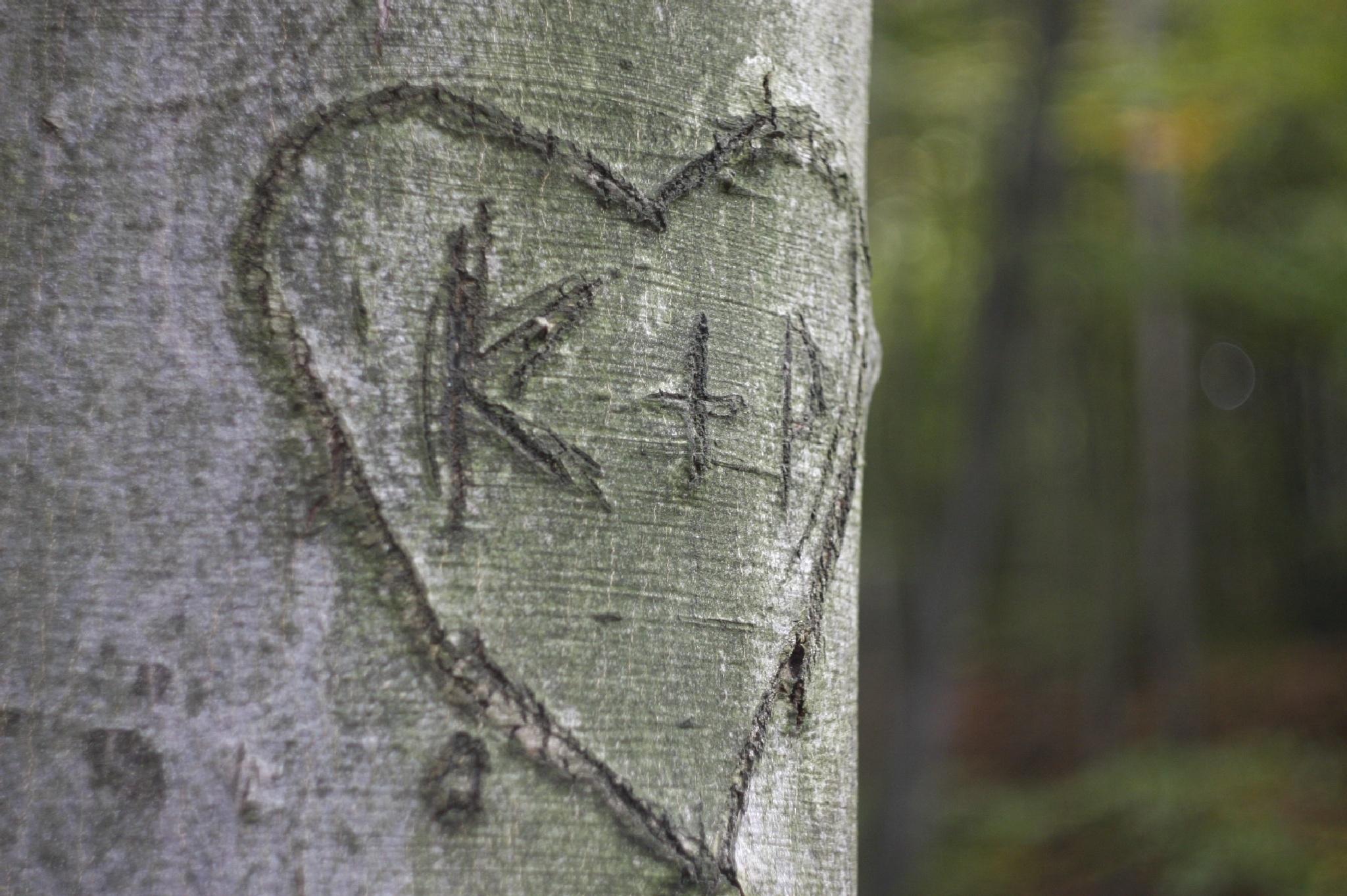 the lovers were here by Robert Jurczyk