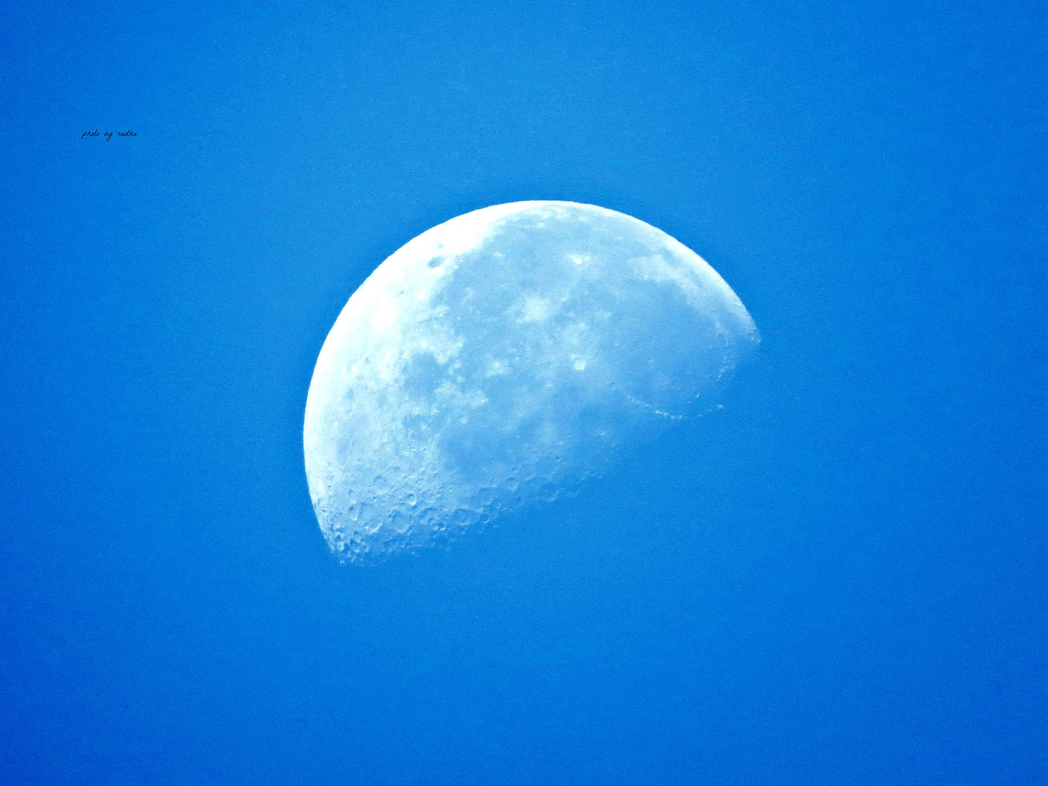 Moon in daylight by Radhamadhavan K S