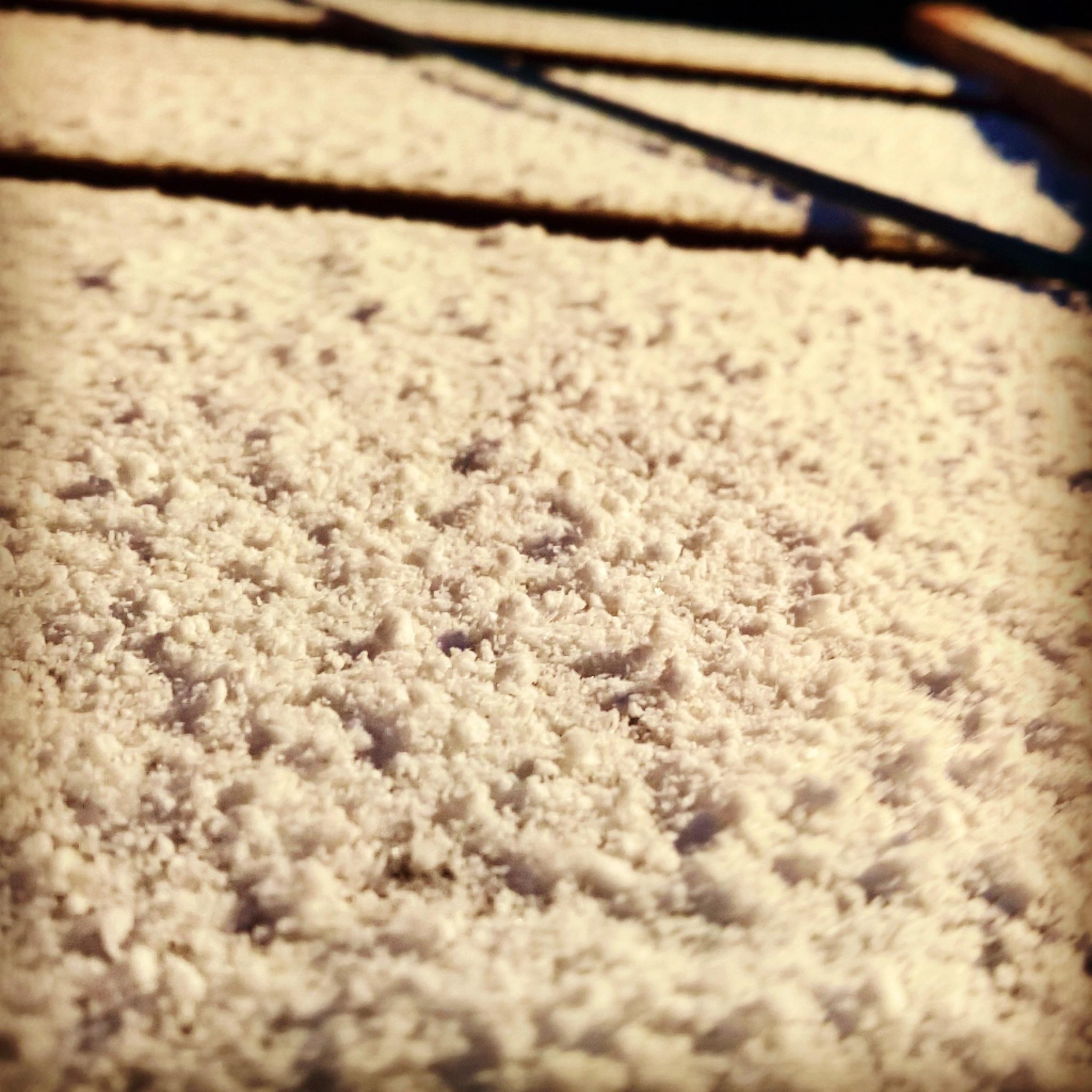 snow by MLBPhotographyStudio