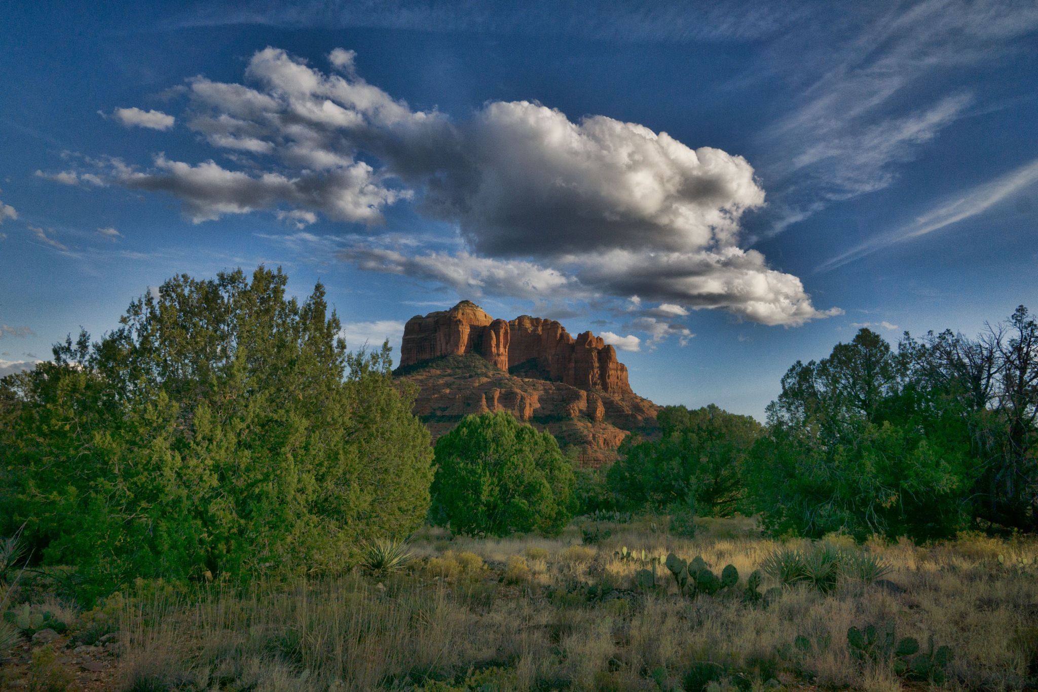 Late Afternoon, Cathedral Rock by John Mark Jennings
