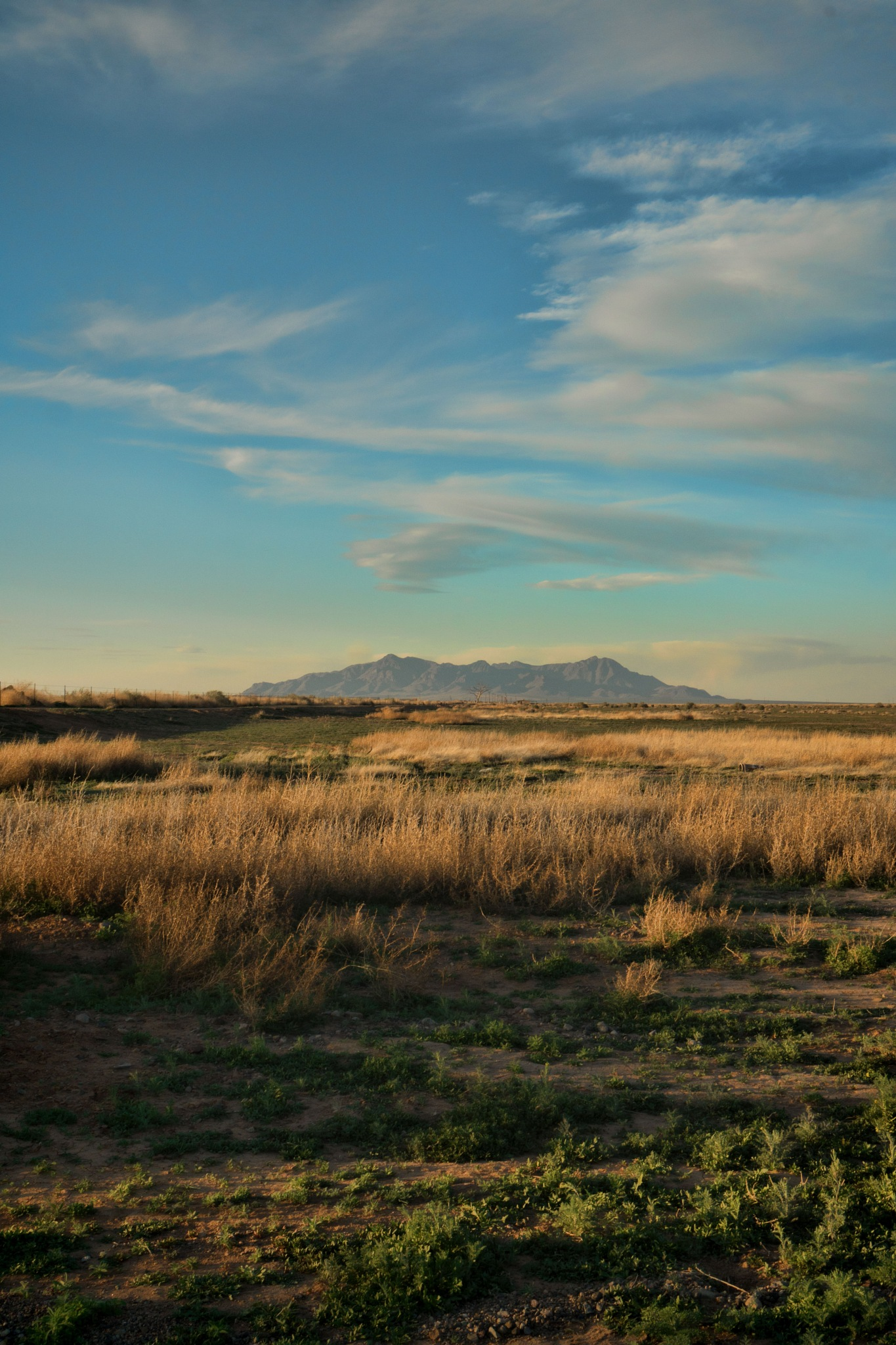 Late afternoon, Columbus, New Mexico USA by John Mark Jennings