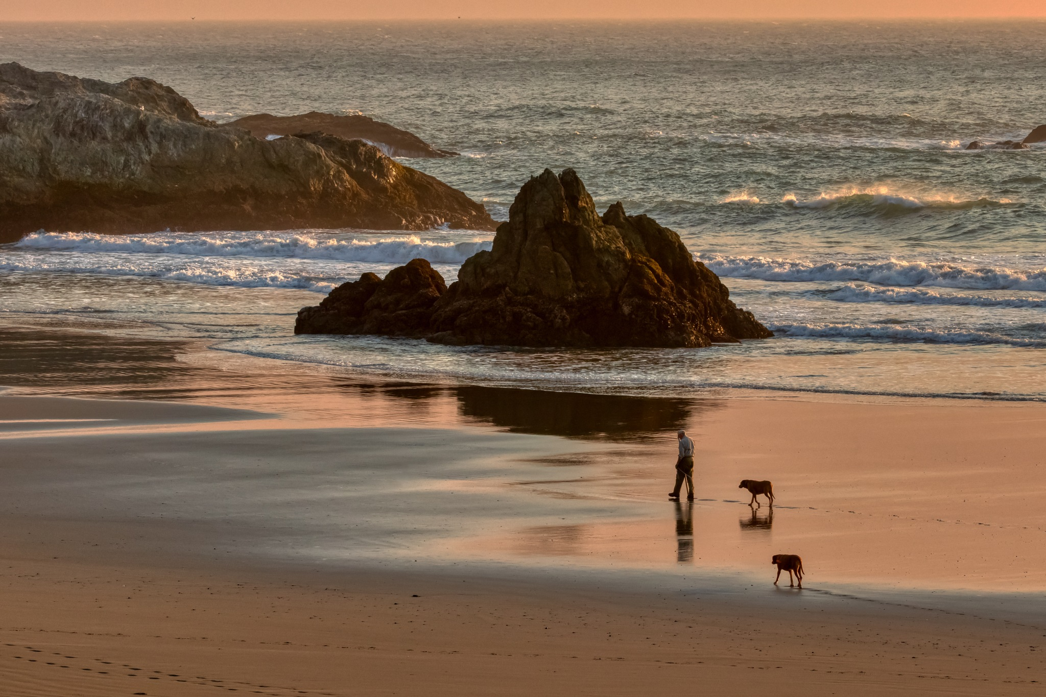 Sunset walk with his two best friends by David Weisbach